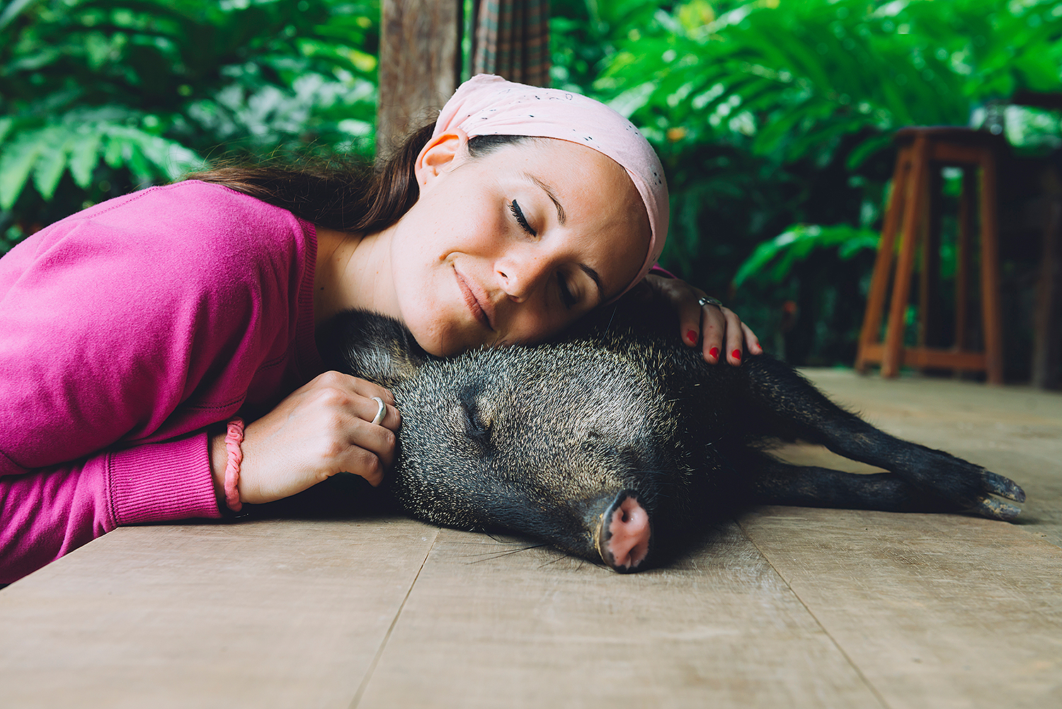 South Carolina Farm Sanctuary Has a 'Piggy Cuddler Team' — And They're Looking for New Members