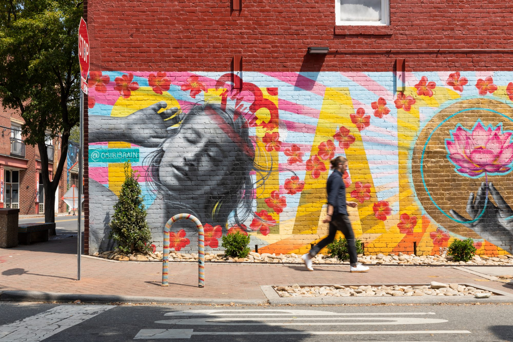 6. NoDa (Charlotte, North Carolina)