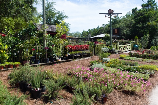 8. Clay Garden & Gifts (Seagrove Beach, Florida)