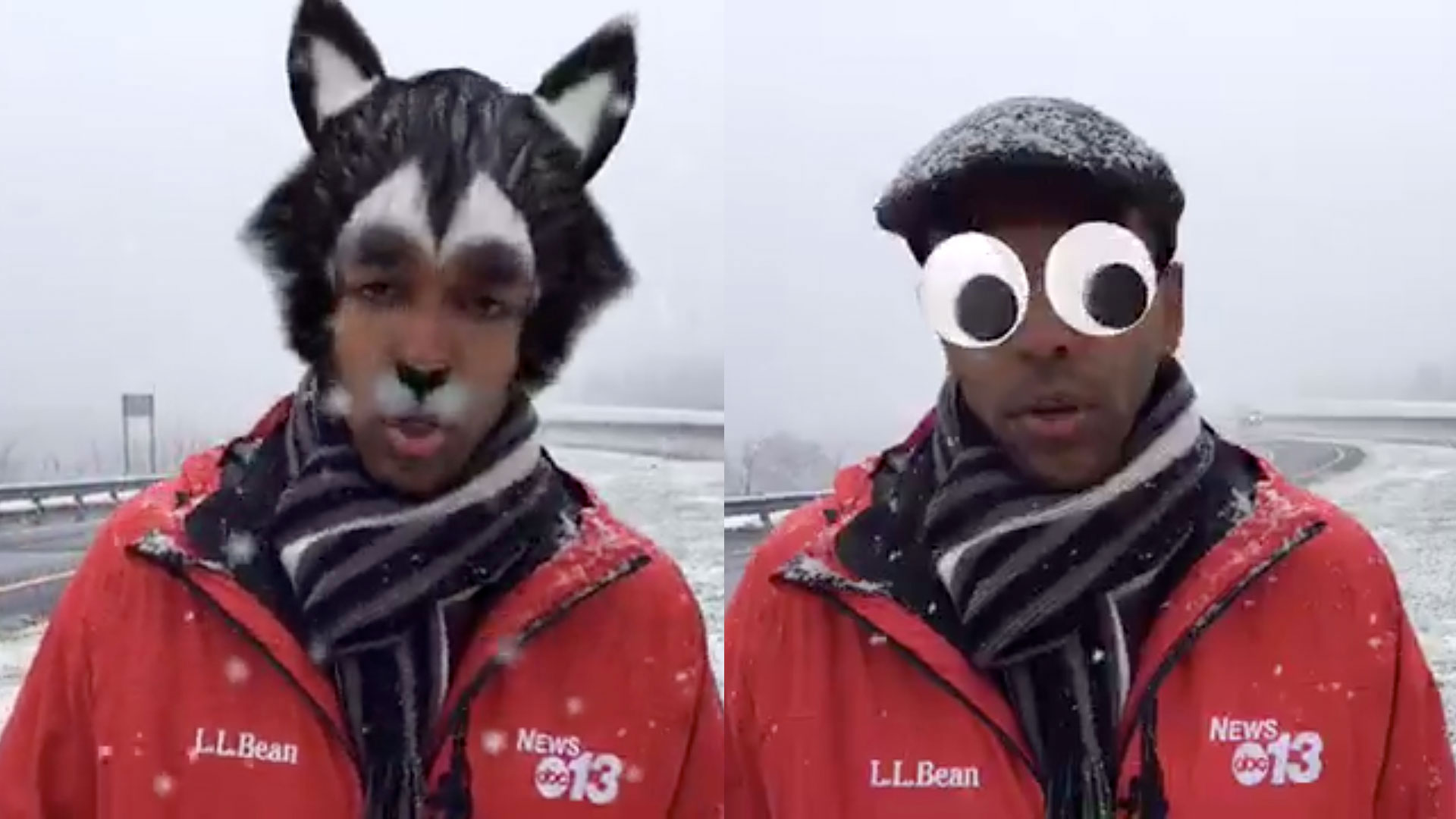 Hilarity Ensues When Reporter Accidentally Turns on Face Filters for Facebook Live Weather Report