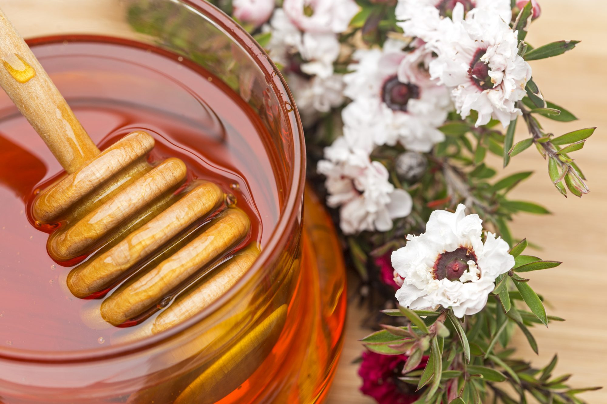 What Is Manuka Honey – and What are Its Benefits?