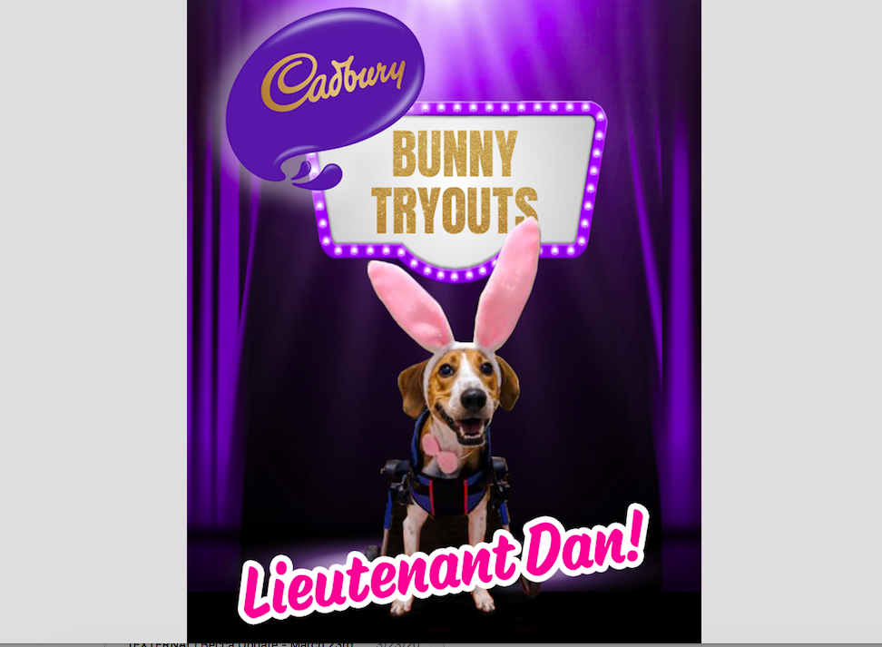 Cadbury Bunny Tryouts Winner Lieutenant Dan