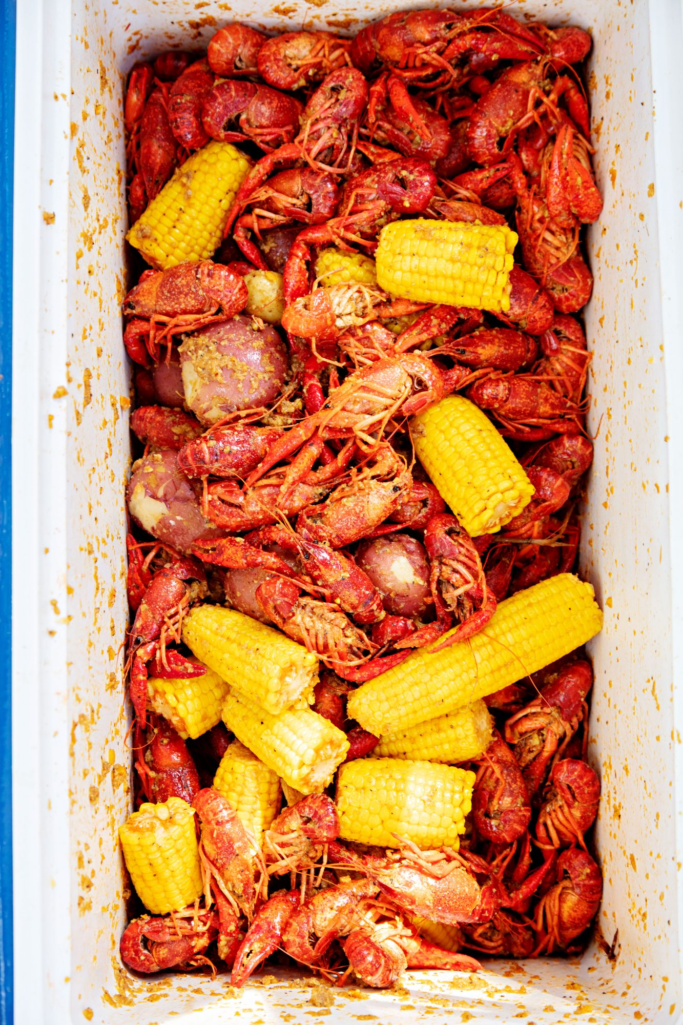 Seasoned Crawfish, Corn, and Potatoes in Cooler at Dao Family's Viet-Cajun Crawfish Boil