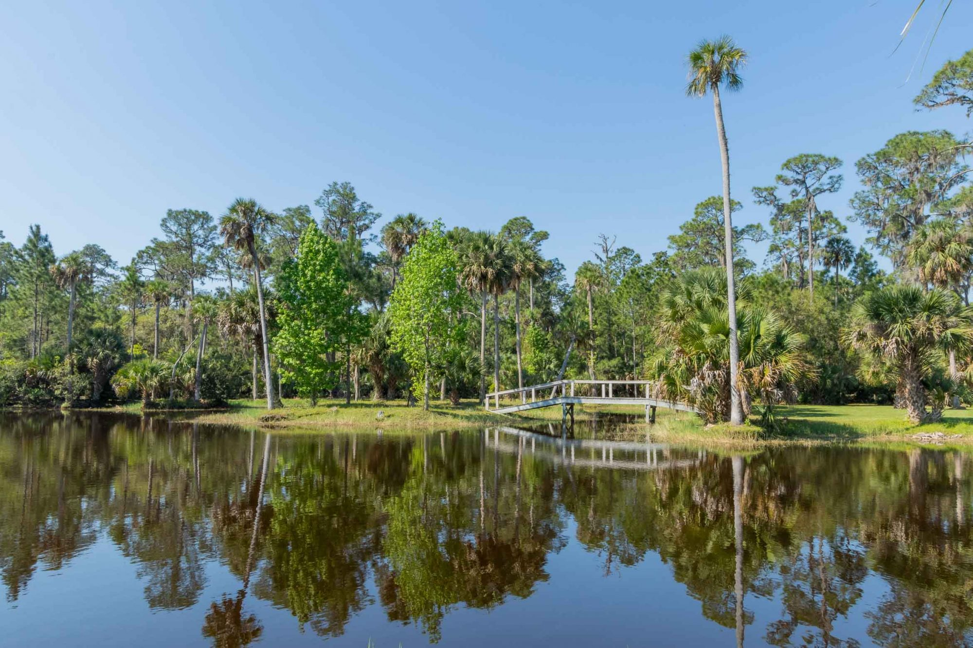 Florida's Largest Inland, Private Island, Hog Island 16