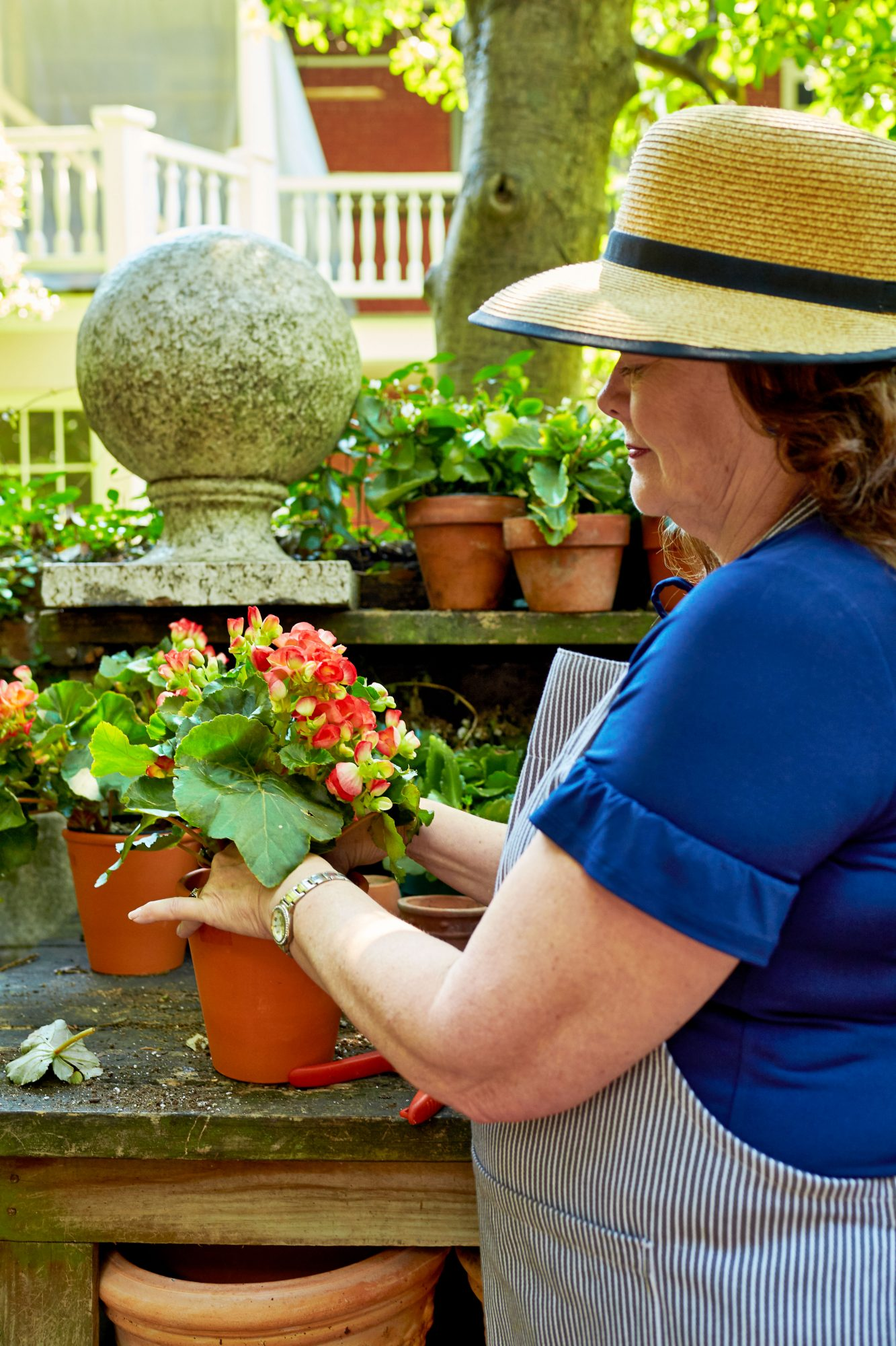 Pamela Scurry Potting Blooms in Her Charleston Garden