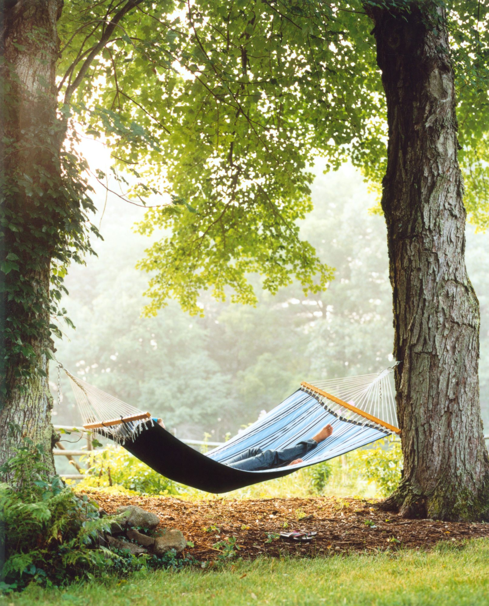 Person Napping in Hammock Between Two Trees