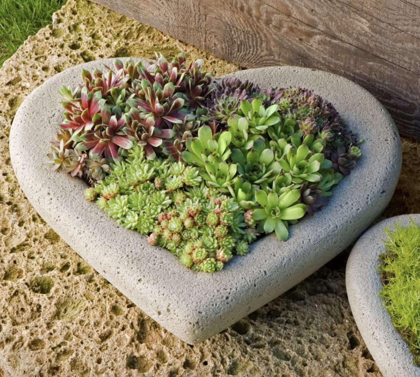 Concrete Heart Planter