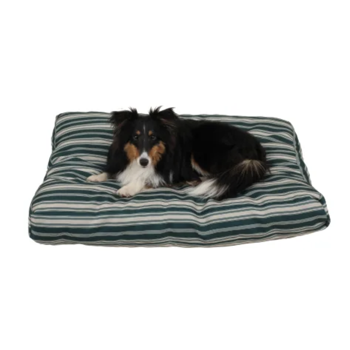 Jamison Green Dog Bed