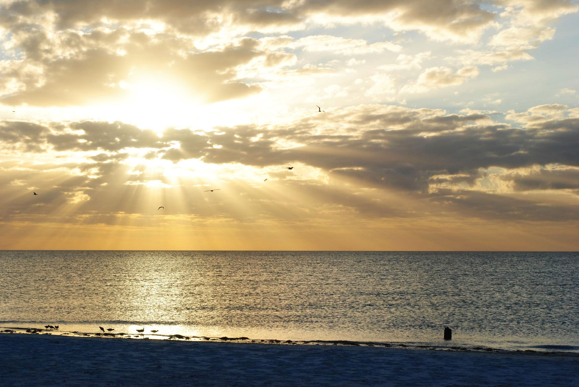 With five miles of clear Gulf waters and pale sand, it's no wonder visitors love this Florida escape. St. Pete Beach, just down the coast from Clearwater, offers endless activities, from Old Florida–style entertainment in Pass-a-Grille's historic district