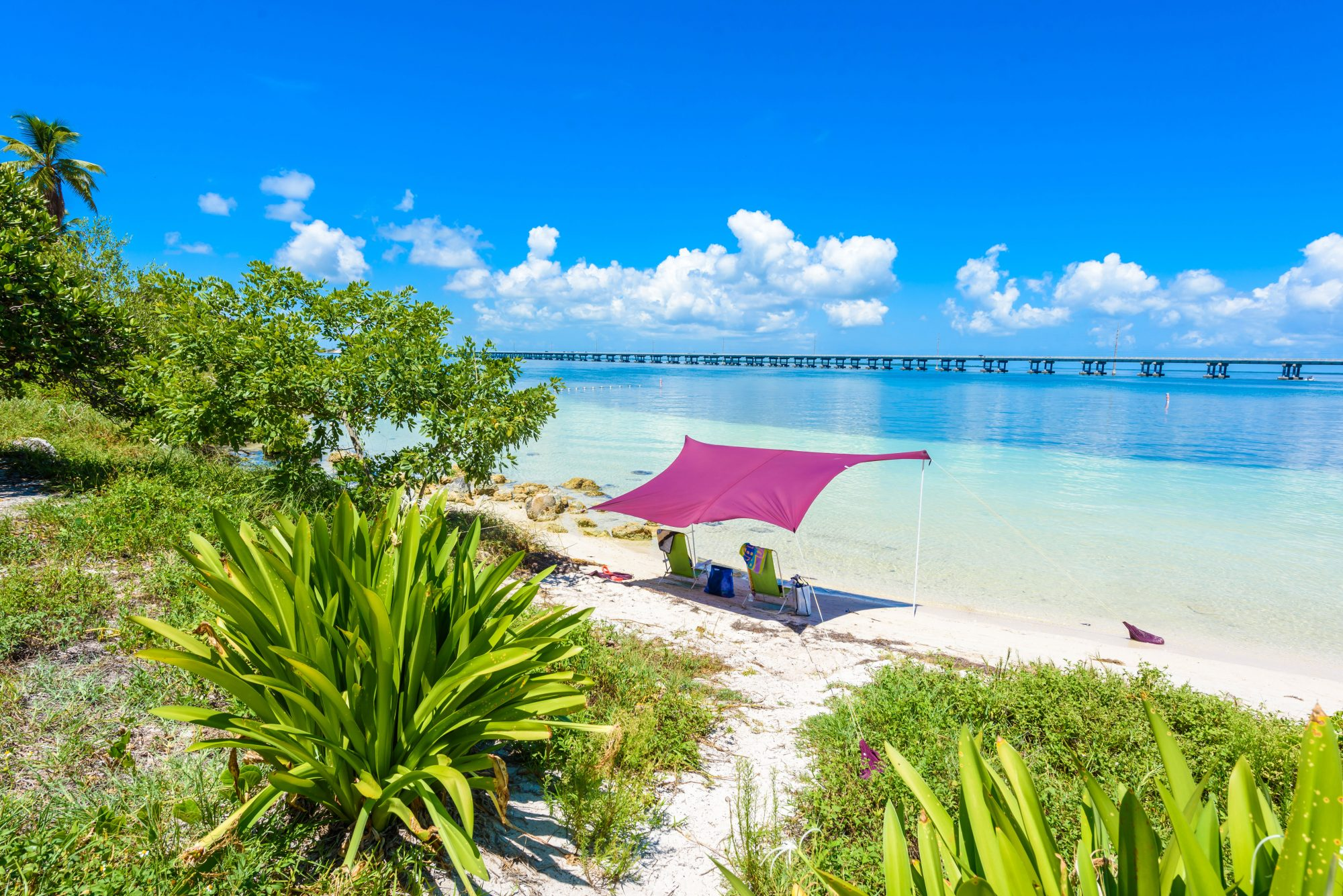 It's easy to see why Bahia Honda State Park's campsites are some of the most sought-after in the Florida parks system—they're mere feet away from some of the best snorkeling spots in the Keys. The shallow water makes swimming here easy for beginners, and sea life is abundant.