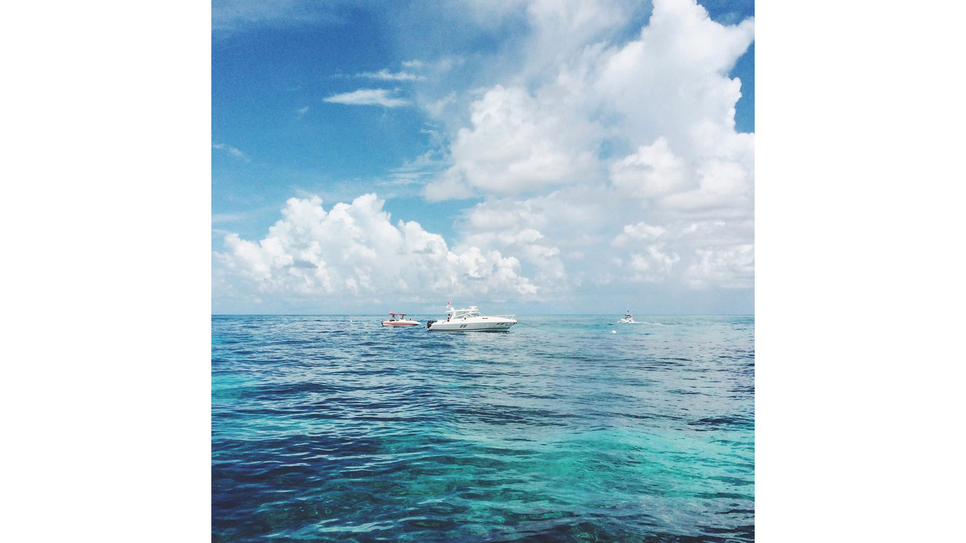 Hop on a boat to Coffins Patch, four nautical miles off Key Colony Beach, for some of the best snorkeling in the middle Keys. It's home to myriad tropical fish, coral, and marine animals, and it's where the Spanish ship Ignacio sunk in the 18th century.