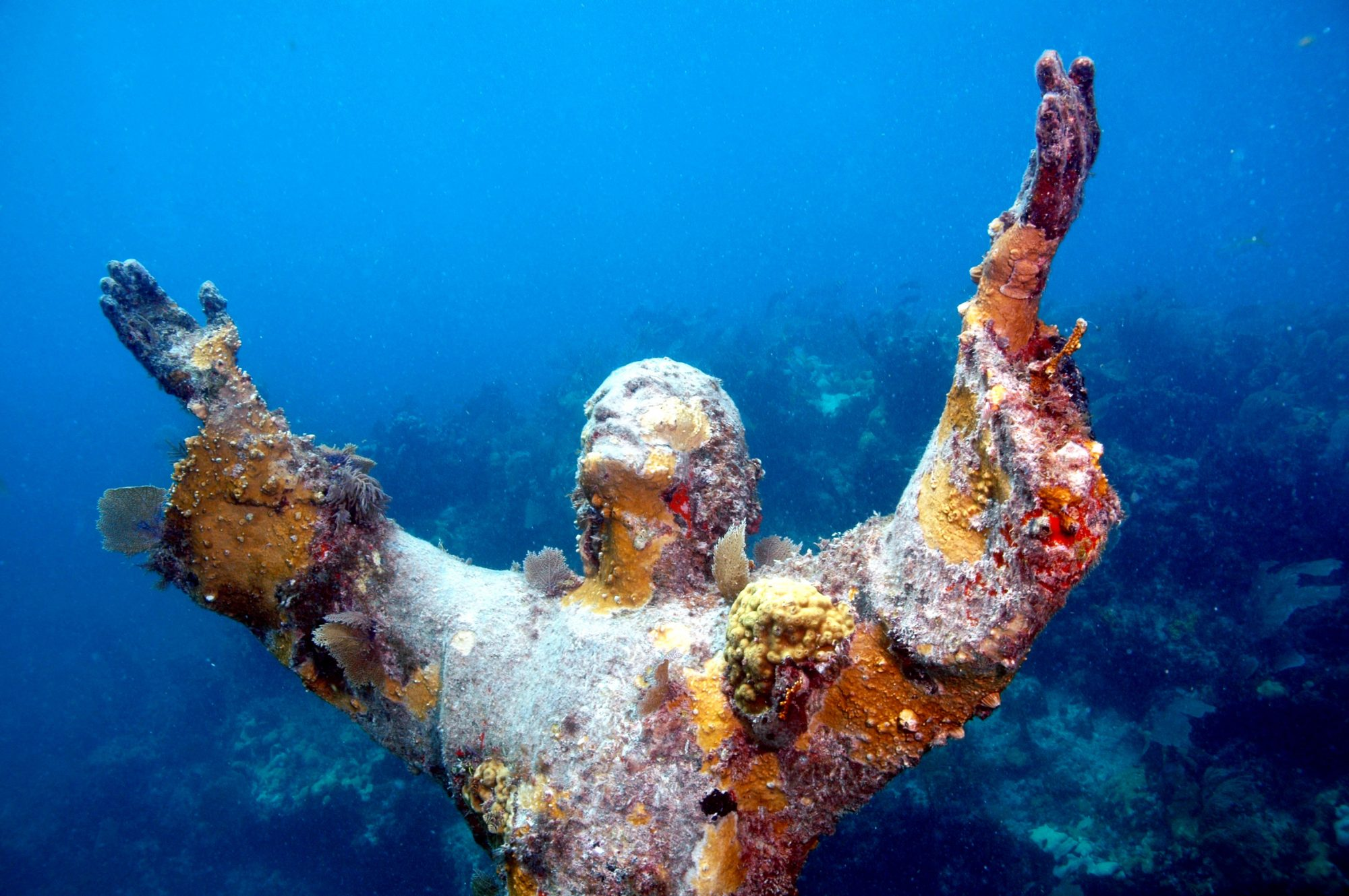 Another offshore excursion, Key Largo Dry Rocks reef east of John Pennekamp Coral Reef State Park is home to the famed Christ of the Abyss statue, which was sunk there in 1965. The nine-foot bronze statue of Jesus Christ stands in 25 feet of water and reaches up with outstretched arms toward the surface, surrounded by tropical fish and other marine life.