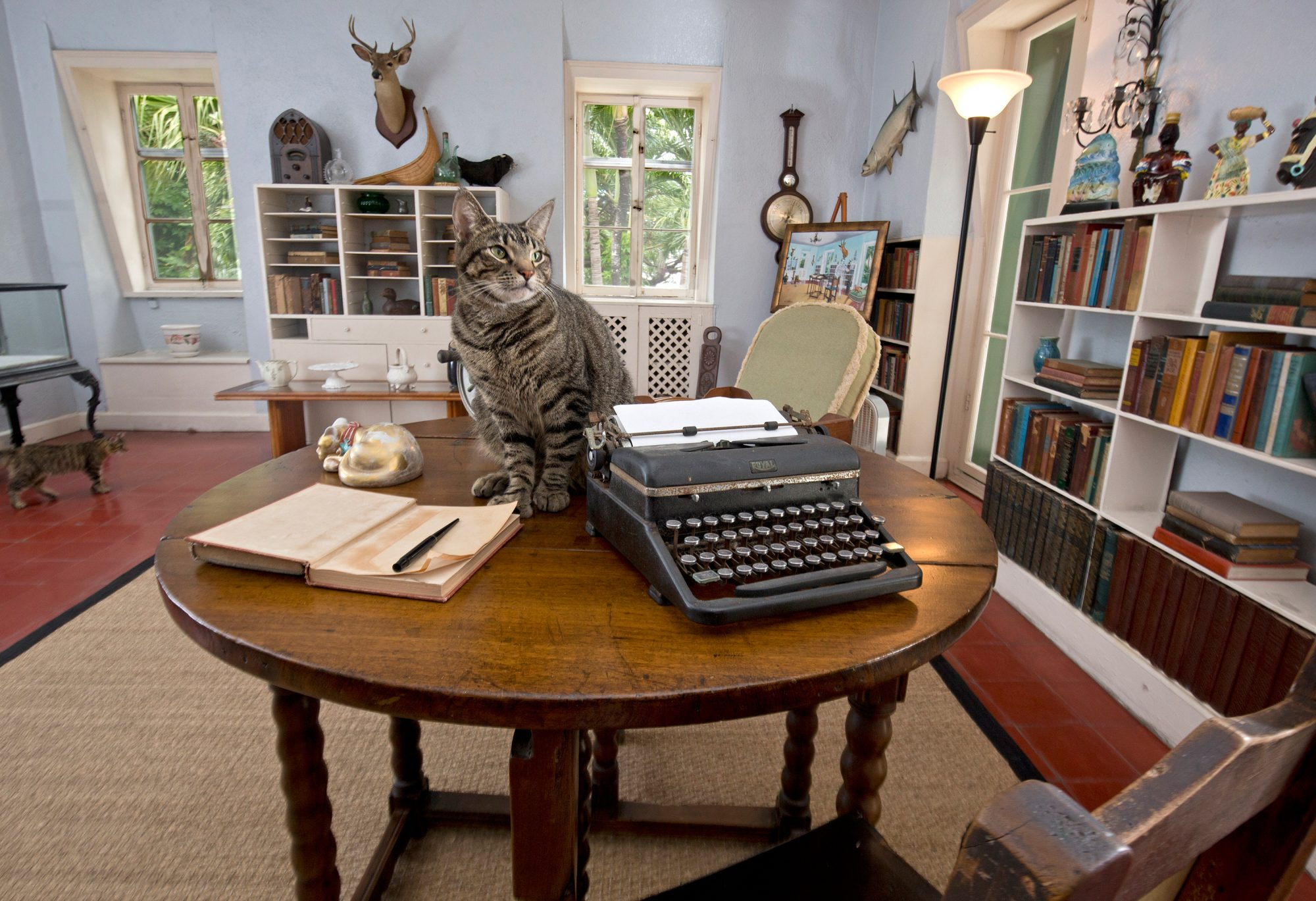 Did you know that around 40 six-toed cats live at the Ernest Hemingway Home and Museum? Legend has it that the writer was given a white six-toed cat by a ship's captain and the legacy lives on. At the home, you can also go on one of the daily tours to lea
