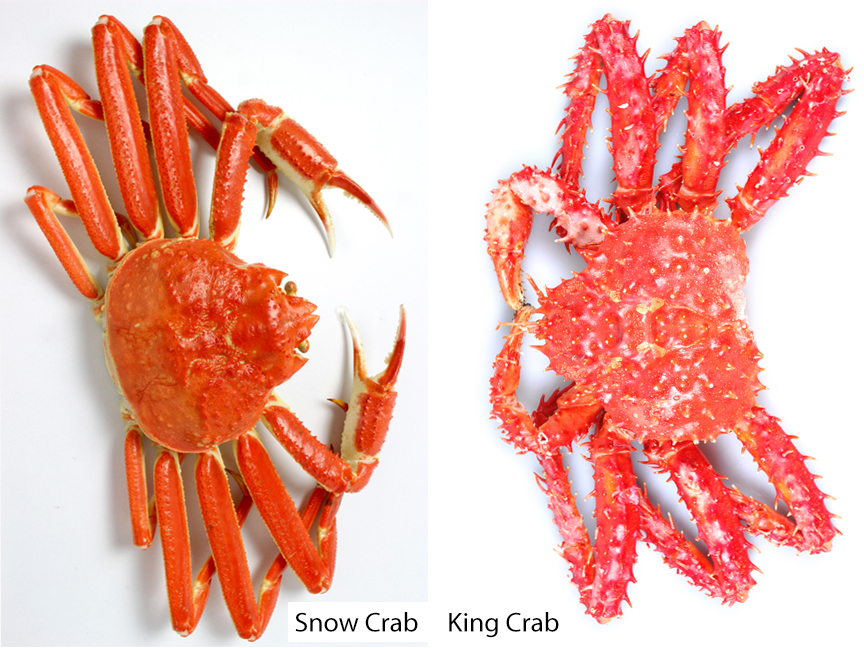 What S The Difference Between Snow Crab And King Crab Southern Living