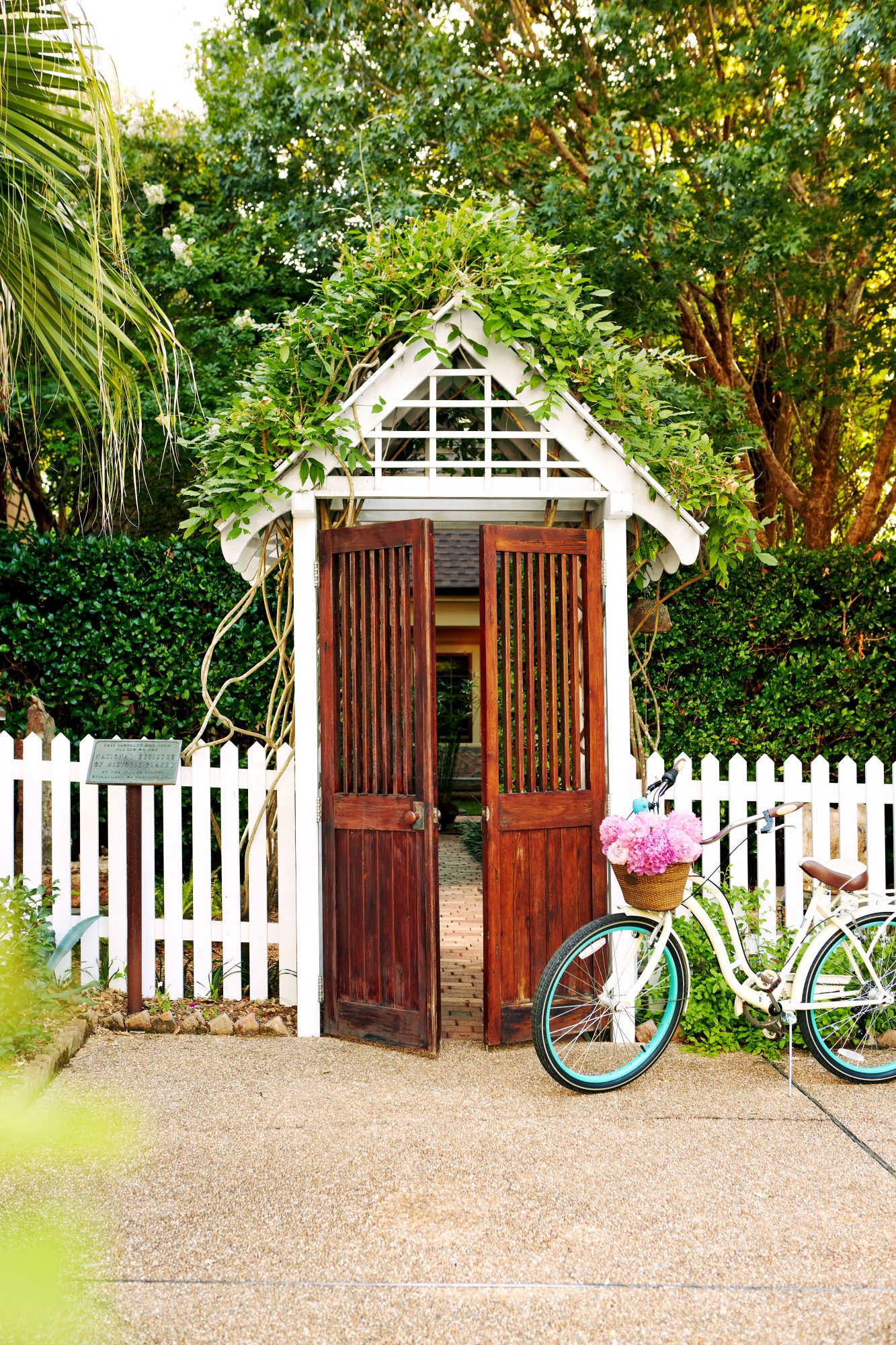 Vine Covered Gate and Picket Fence with Bike