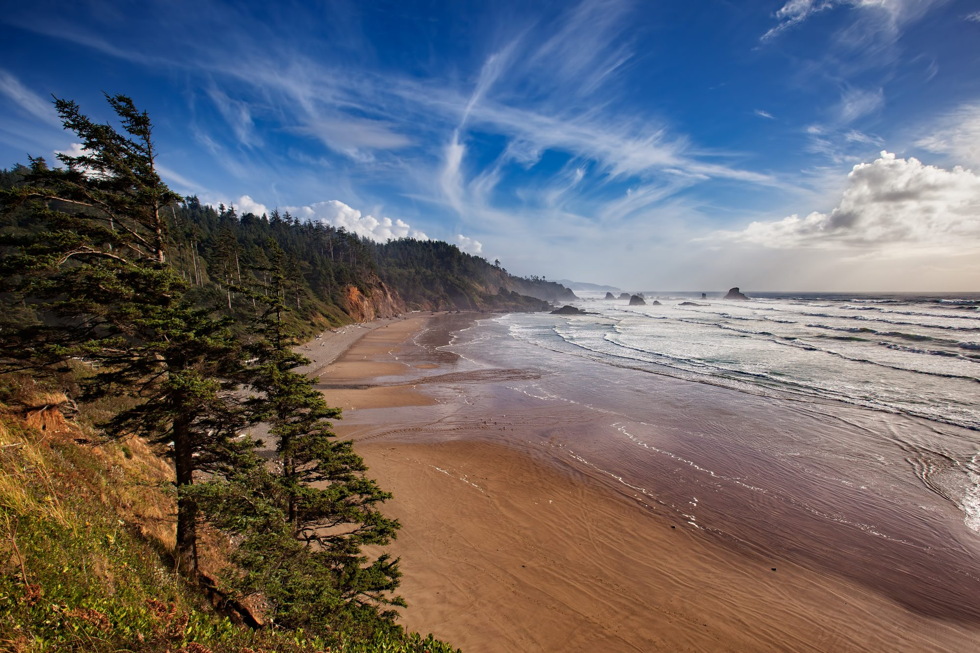 On a summer weekend you'll see lines of cars parked along Cannon Beach. Keep on driving. Head north into Ecola State Park, and follow a winding road through a Sitka spruce forest. Turn the corner and discover a secluded crescent beach and the Pacific beyond. Great for strolling, finding pretty pieces of driftwood, and checking out tide pools.