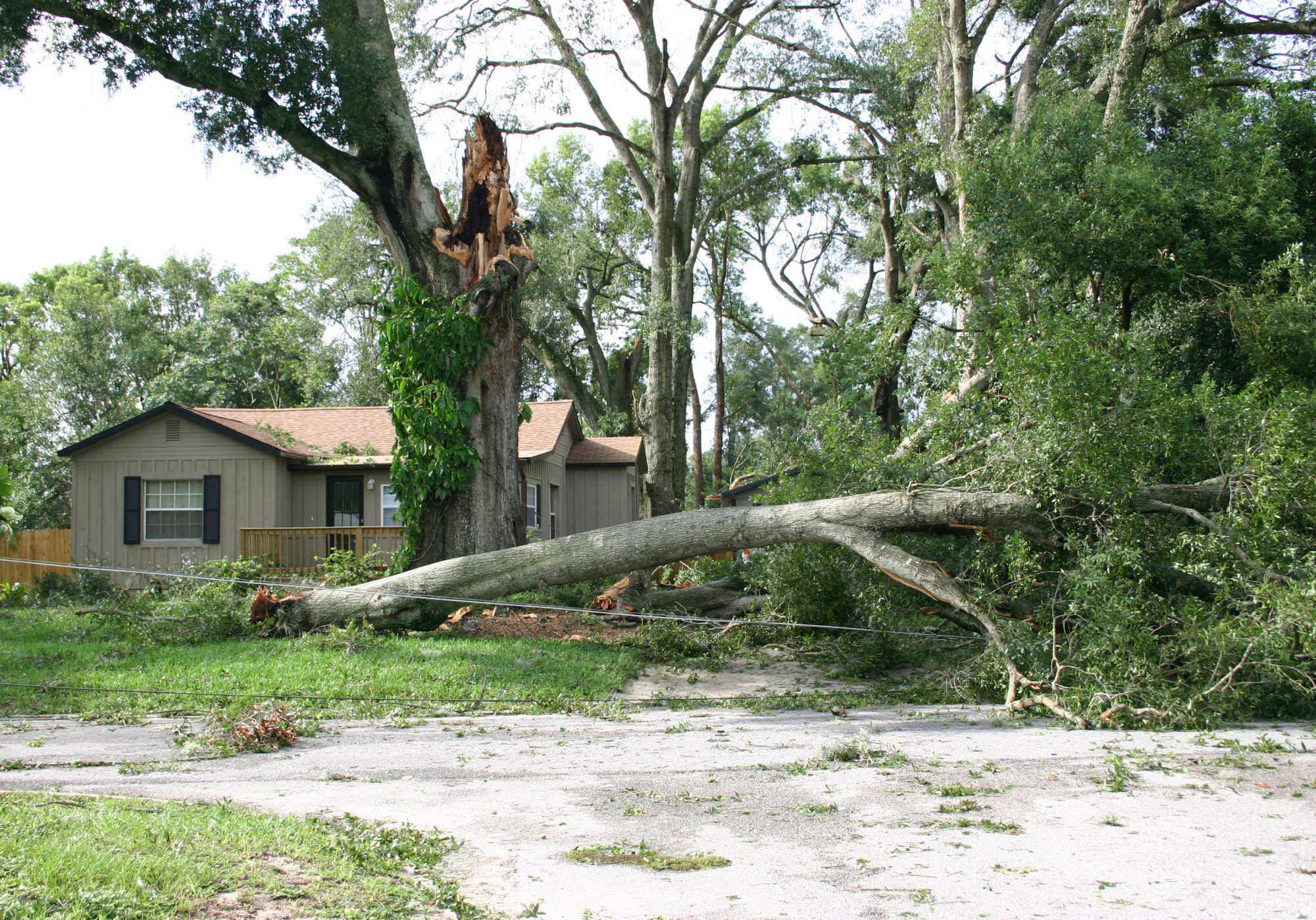 Before Hurricane Ivan hit Alabama and northwest Florida, Category 4 Hurricane Charley struck southwest Florida, just west of Ft. Myers, on August 13, 2004. Charley was the first of four hurricanes to affect Florida in August and September of that year, and the second-most damaging, after Ivan. Cost: $15 billion