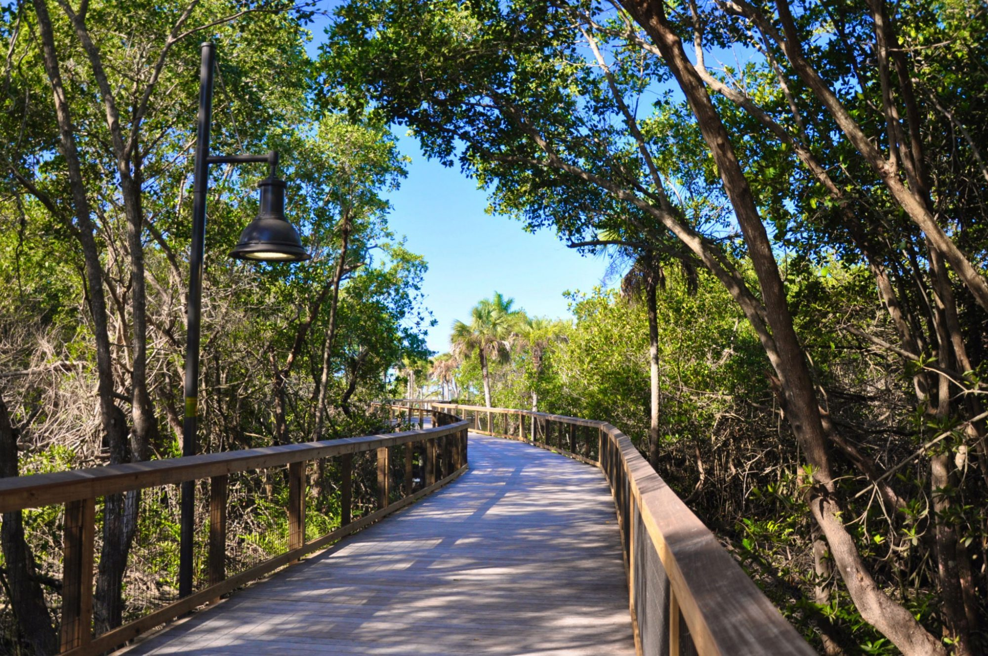Gordon River Greenway in Naples