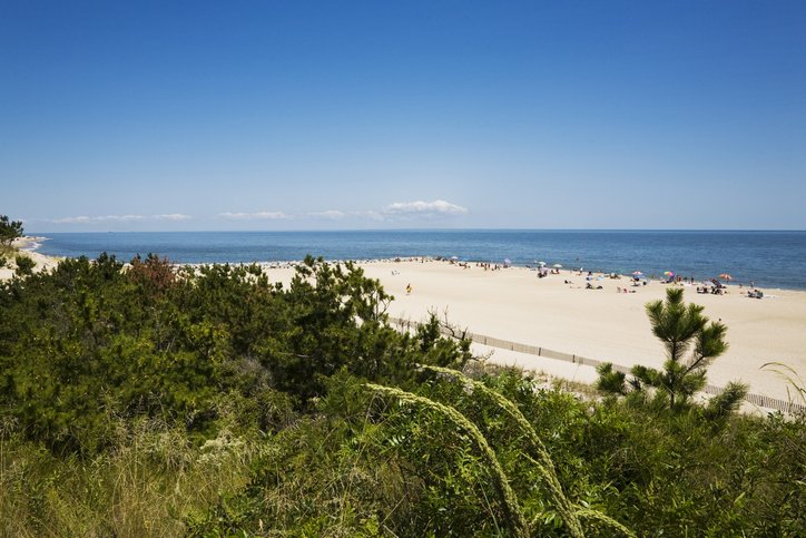 Beach at Cape Henlopen State Park