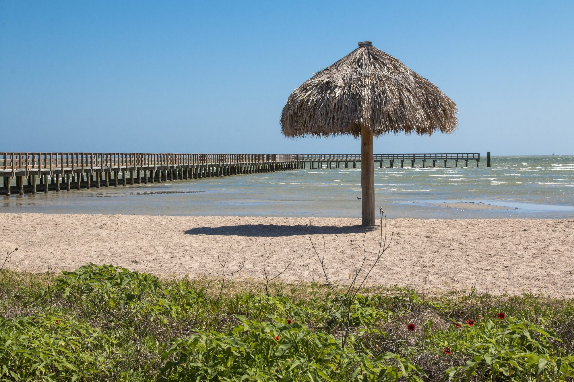 With a passion for clean waters and sands, this beach in the historic small city of the same name on Aransas Bay was the state's first Blue Wave Beach—an environmental certification granted by the Clean Beaches Coalition. With no vehicles, dogs, beach bon