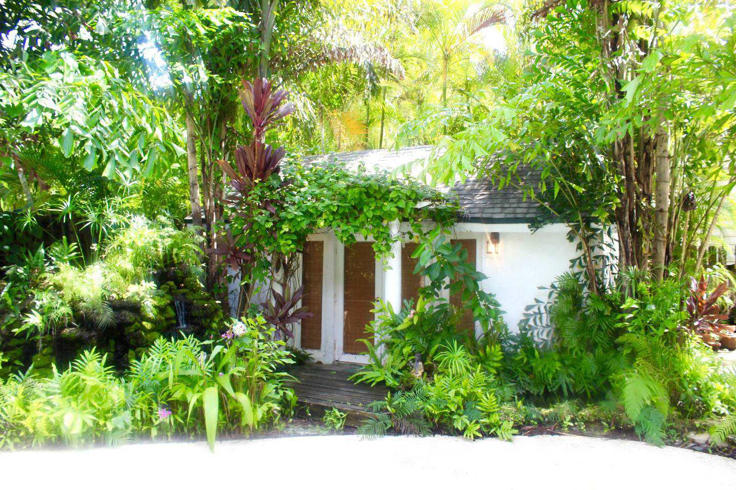 Surrounded by trees in the laidback Coconut Grove neighborhood of Miami, this secluded spot is serene on the inside and verdant on the outside. Vaulted ceilings give the small space—the cottage consists of a bedroom and a bathroom, plus an efficiency kitc