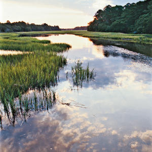 Edisto Island, South Carolina                                       Residents here ditch rush hour and embrace island time. In Edisto Beach, you'll find no chain restaurants, no stoplights, no motels or hotels, and only one grocery store. The town has more churches than restaurants and gift shops combined.