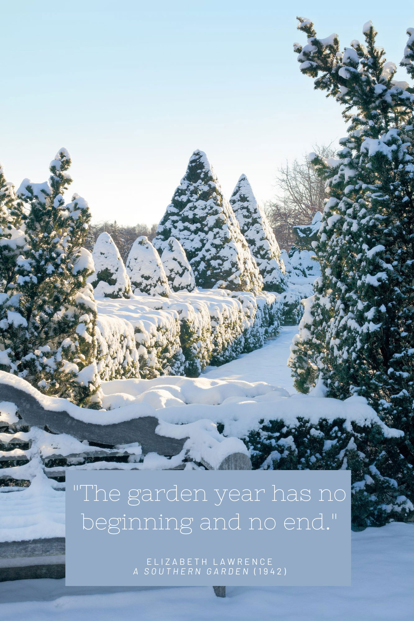 Quotes About the Magic of Gardening