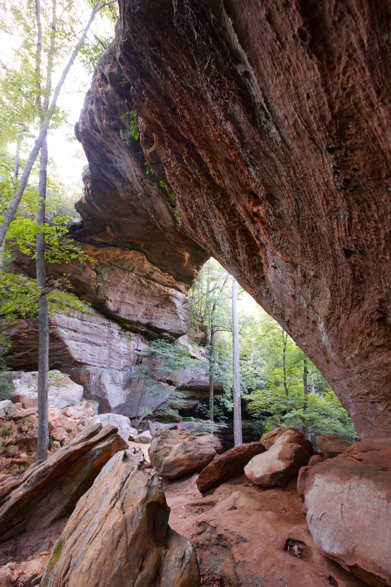 Red River Gorge Geological Area in Kentucky