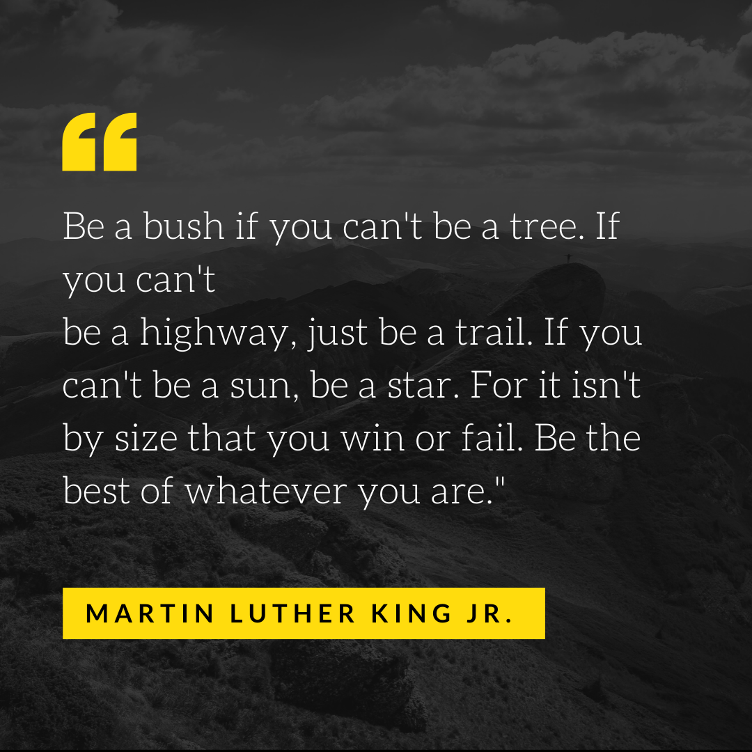 Martin Luther King Jr Quote2
