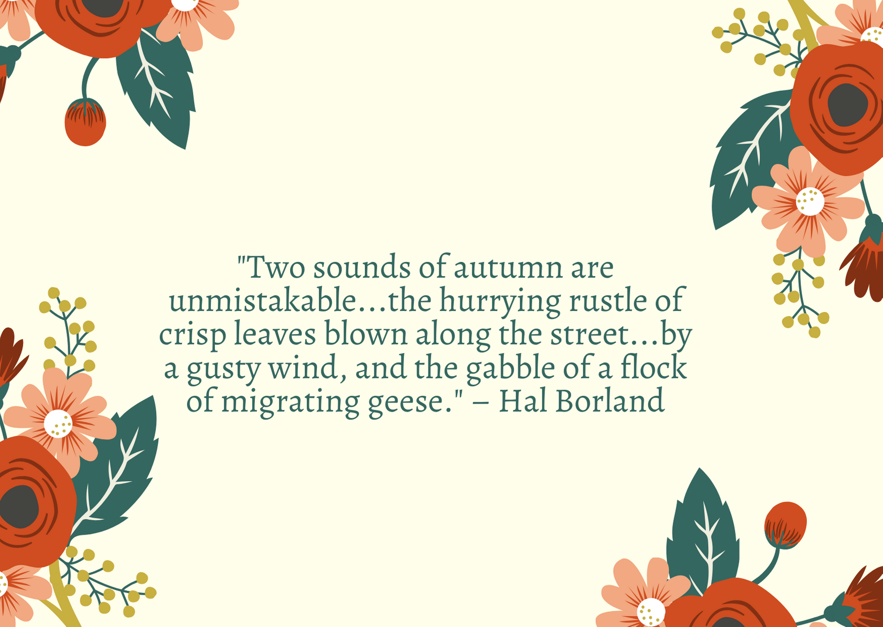 """Two sounds of autumn are unmistakable...the hurrying rustle of crisp leaves blown along the street...by a gusty wind, and the gabble of a flock of migrating geese."" – Hal Borland"