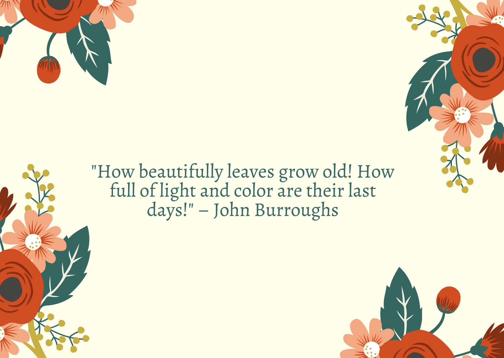 """How beautifully leaves grow old! How full of light and color are their last days!"" – John Burroughs"