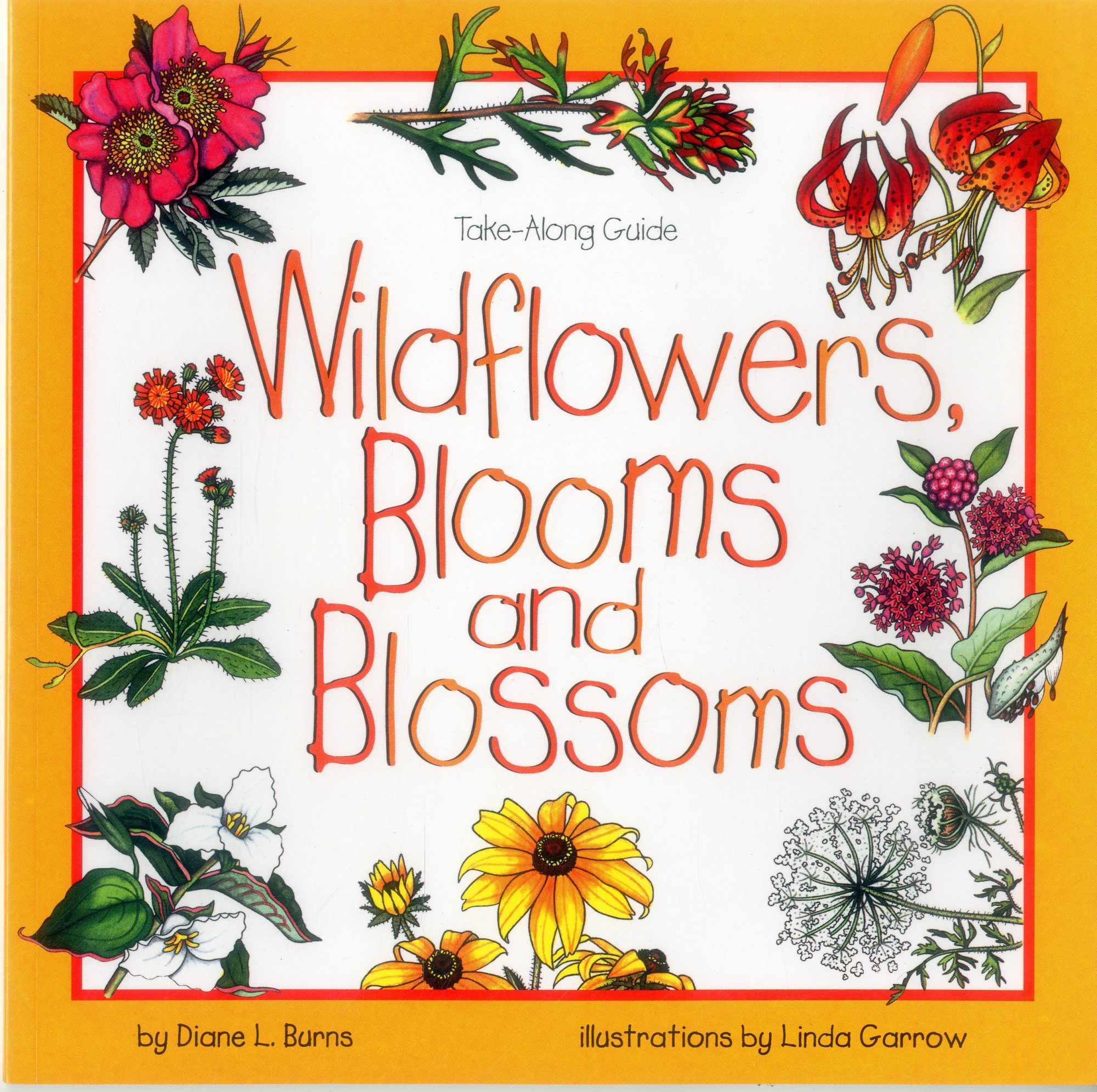 Wildflowers, Blooms & Blossoms by Diane L. Burns