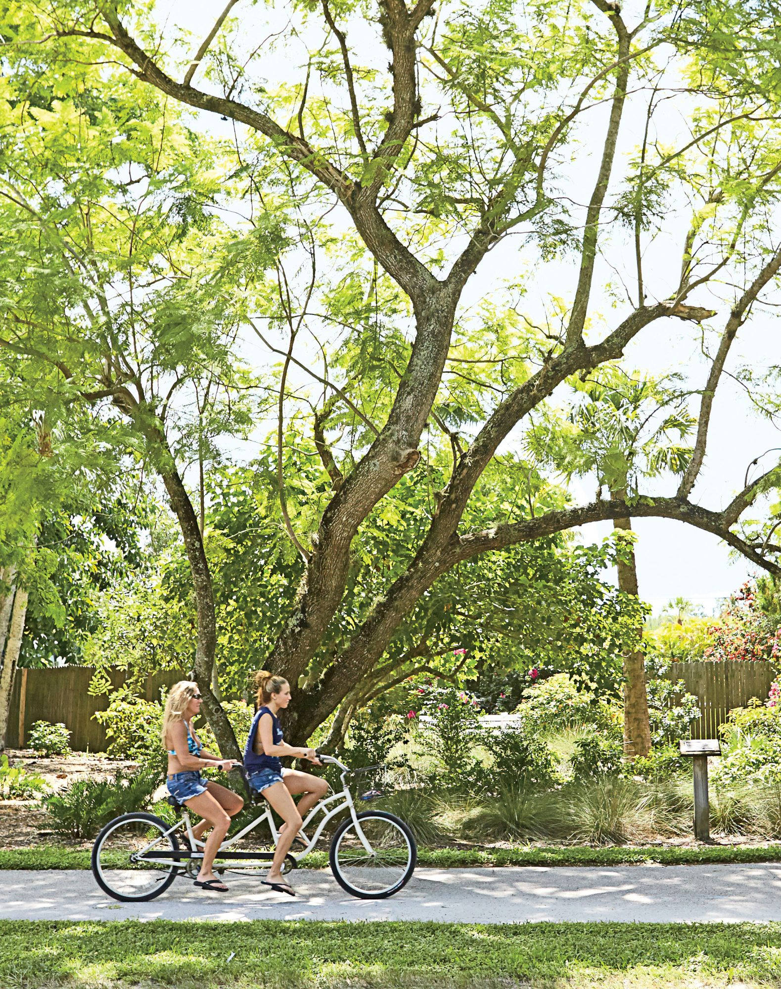 Covering 25 miles of family-friendly neighborhoods, Sanibel's bike trails are the best means for exploring the island.