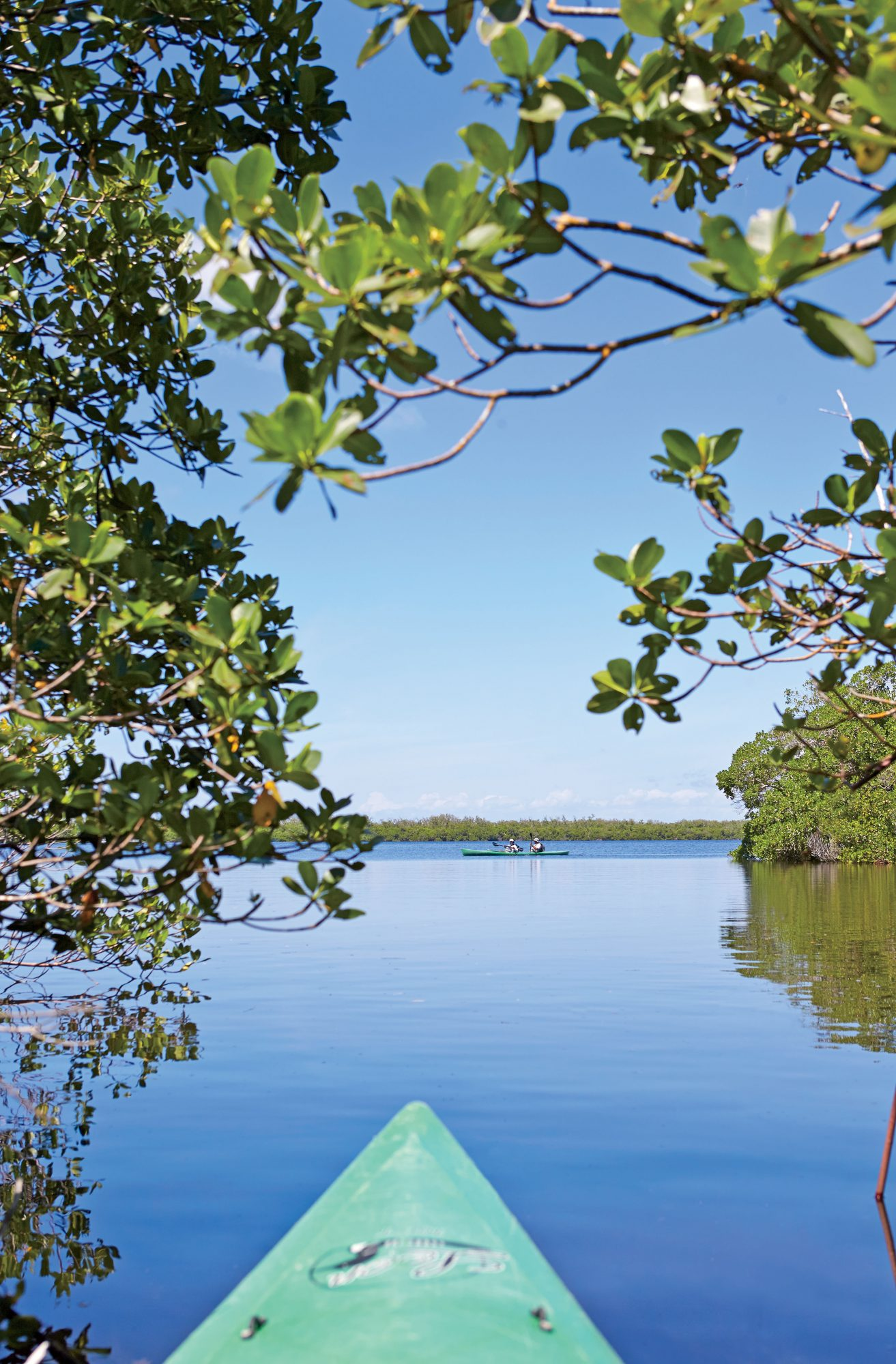 "Besides shells, Sanibel's other claim to fame is The J.N. ""Ding"" Darling National Wildlife Refuge, known simply as Ding Darling."
