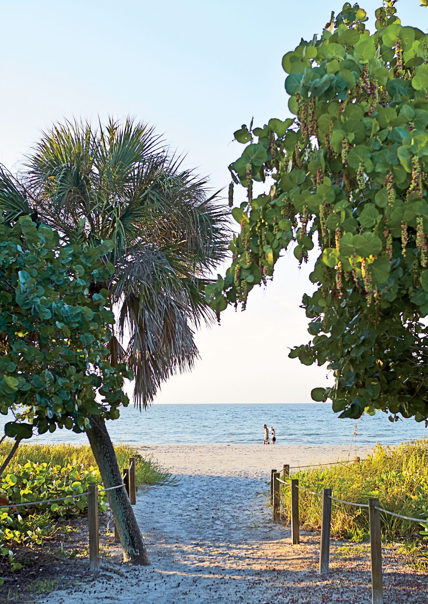 The very act of arriving on Sanibel Island, off Florida's southern Gulf coast, feels like a beautiful escape. The only way to get on the isle, 20 miles southwest of Fort Myers, is to drive across a three-mile causeway that is surrounded by a sparkling bay