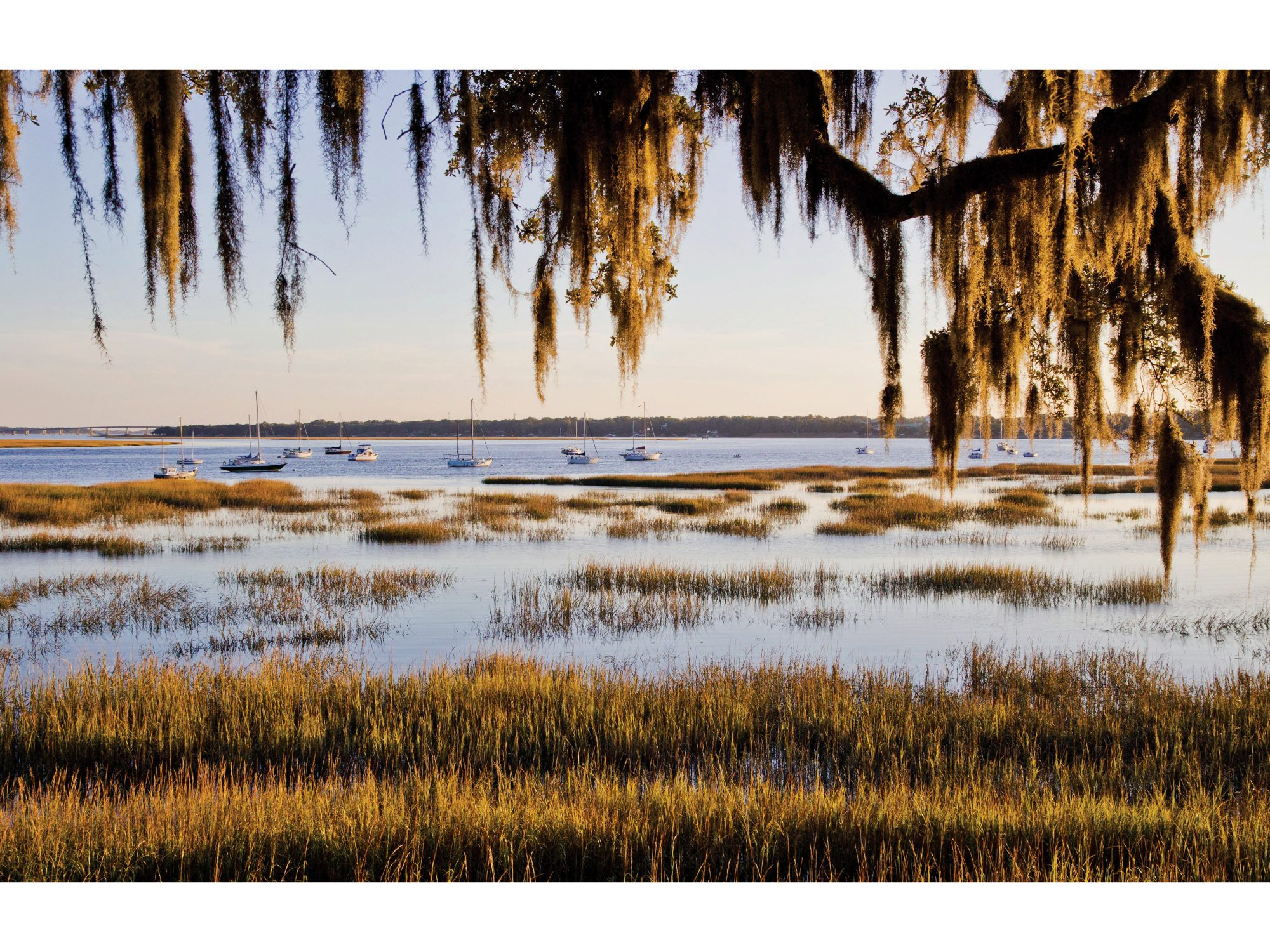 A serene Lowcountry vista in Beaufort