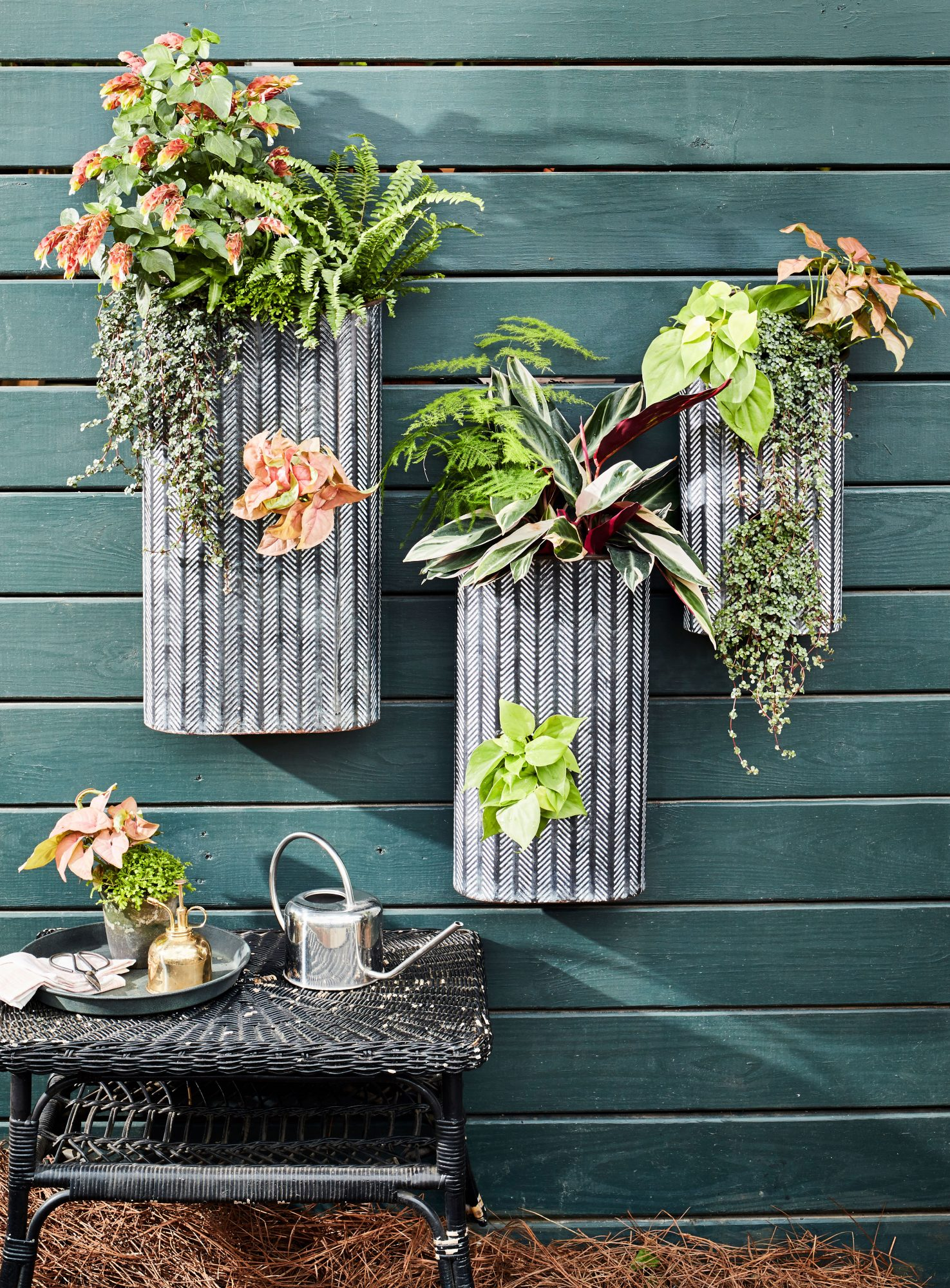 Metal Wall Hanging Container Garden with Summer Plants