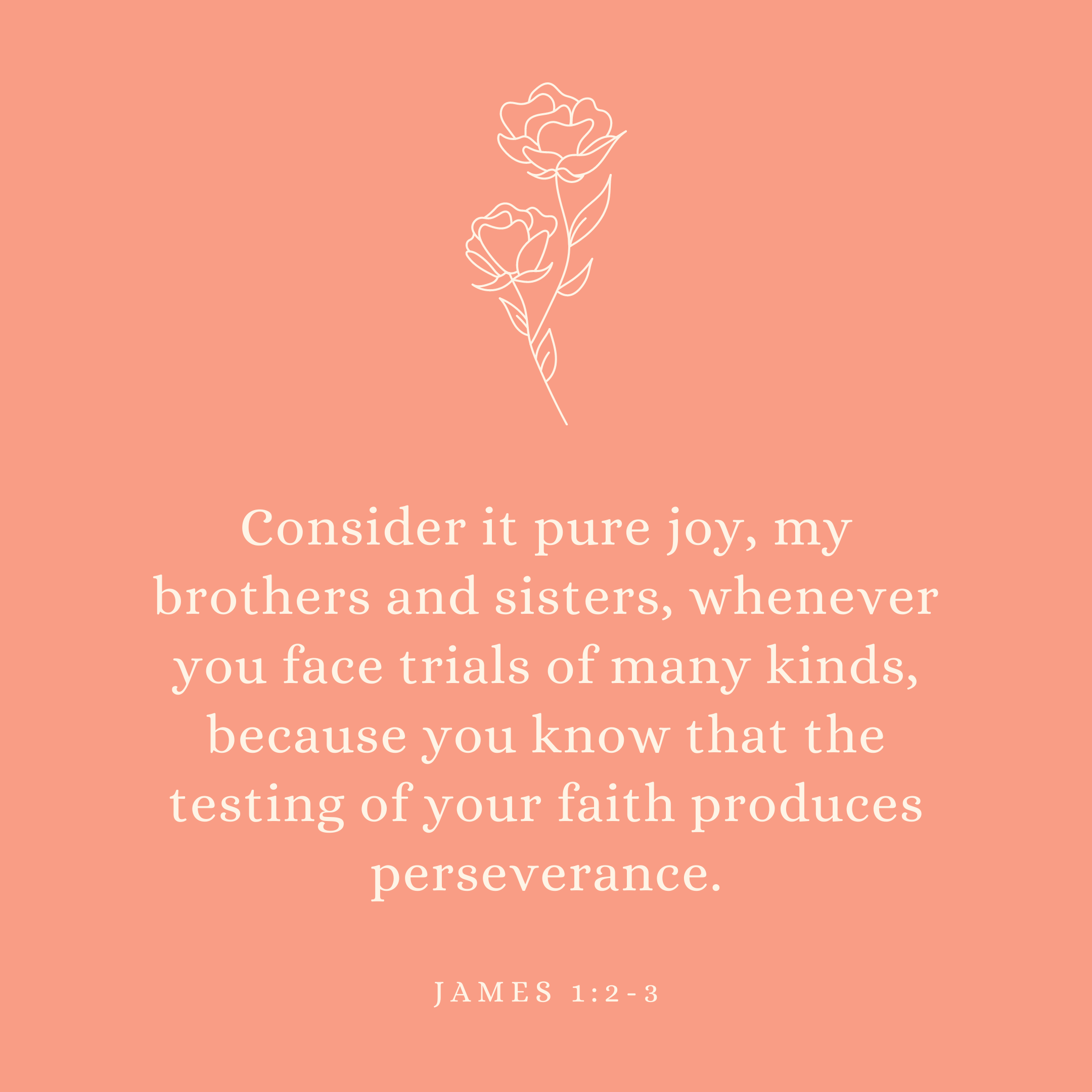 James 1:2-3 Consider it pure joy, my brothers and sisters, whenever you face trials of many kinds, because you know that the testing of your faith produces perseverance.