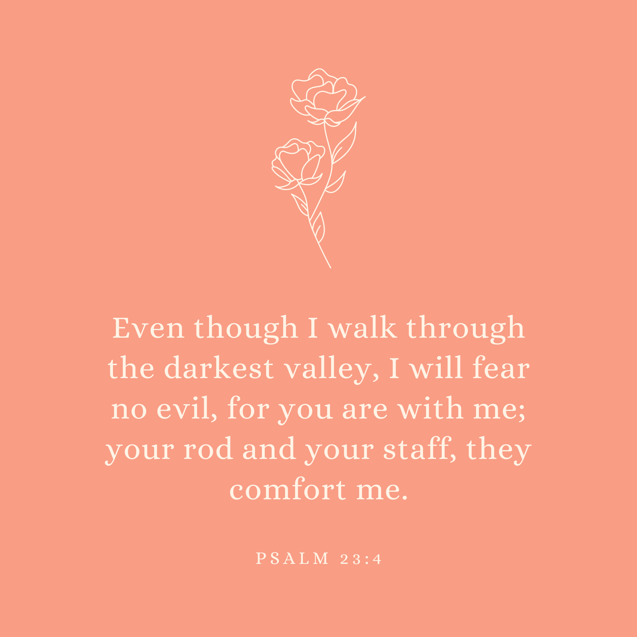 Psalm 23:4 Even though I walk through the darkest valley, I will fear no evil, for you are with me; your rod and your staff, they comfort me.