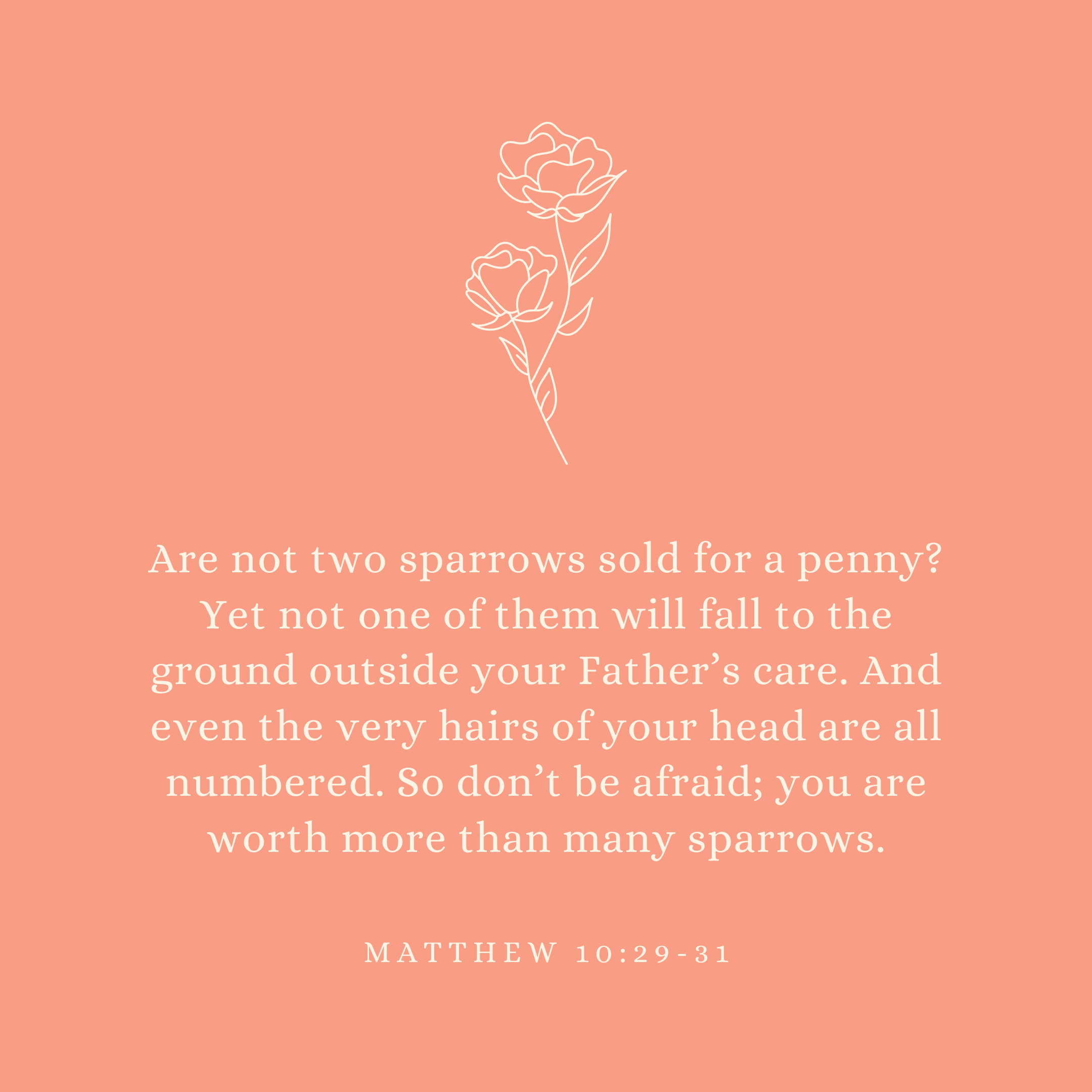 Matthew 10:29-31 Are not two sparrows sold for a penny? Yet not one of them will fall to the ground outside your Father's care. And even the very hairs of your head are all numbered. So don't be afraid; you are worth more than many sparrows.