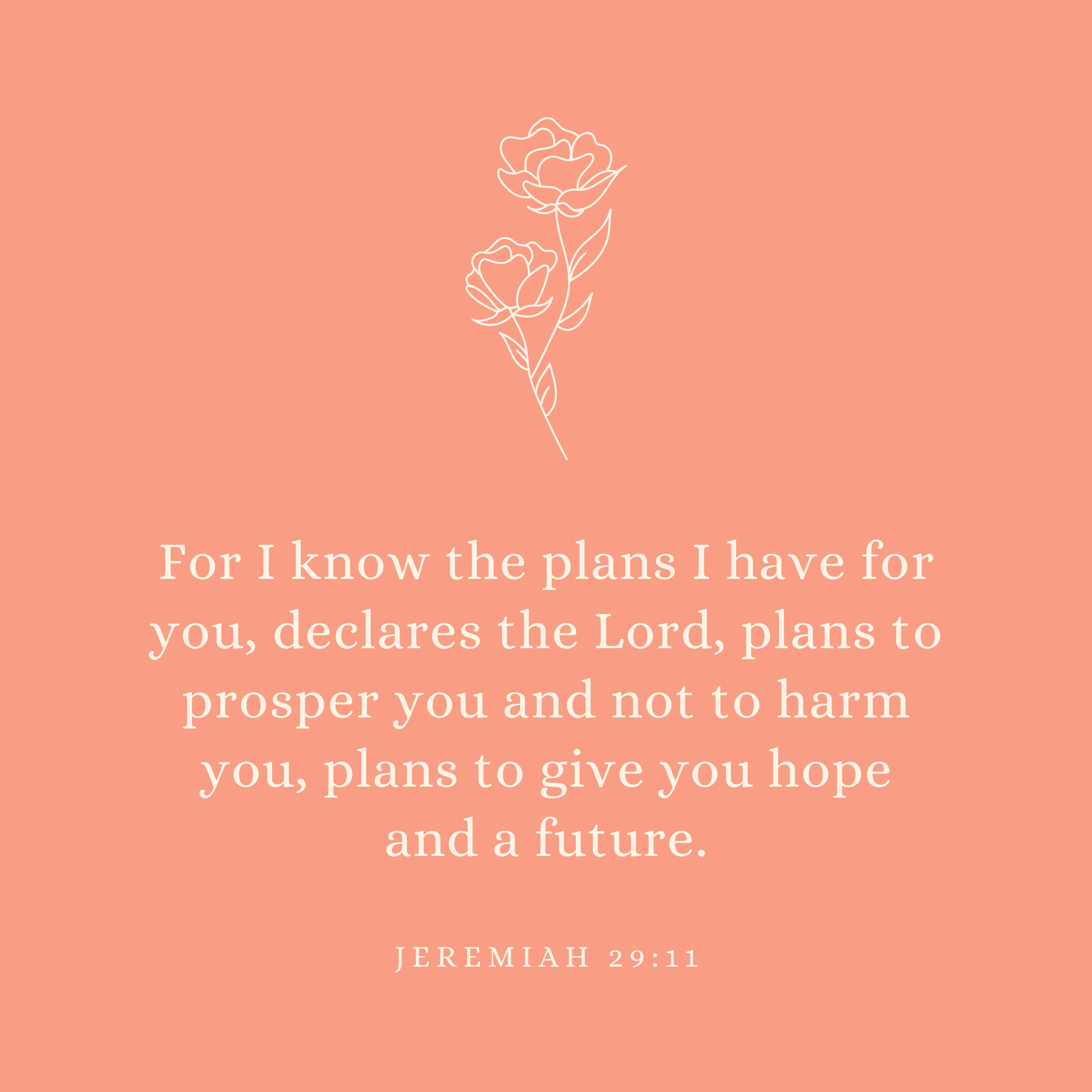 Jeremiah 29:11 For I know the plans I have for you, declares the Lord, plans to prosper you and not to harm you, plans to give you hope and a future.