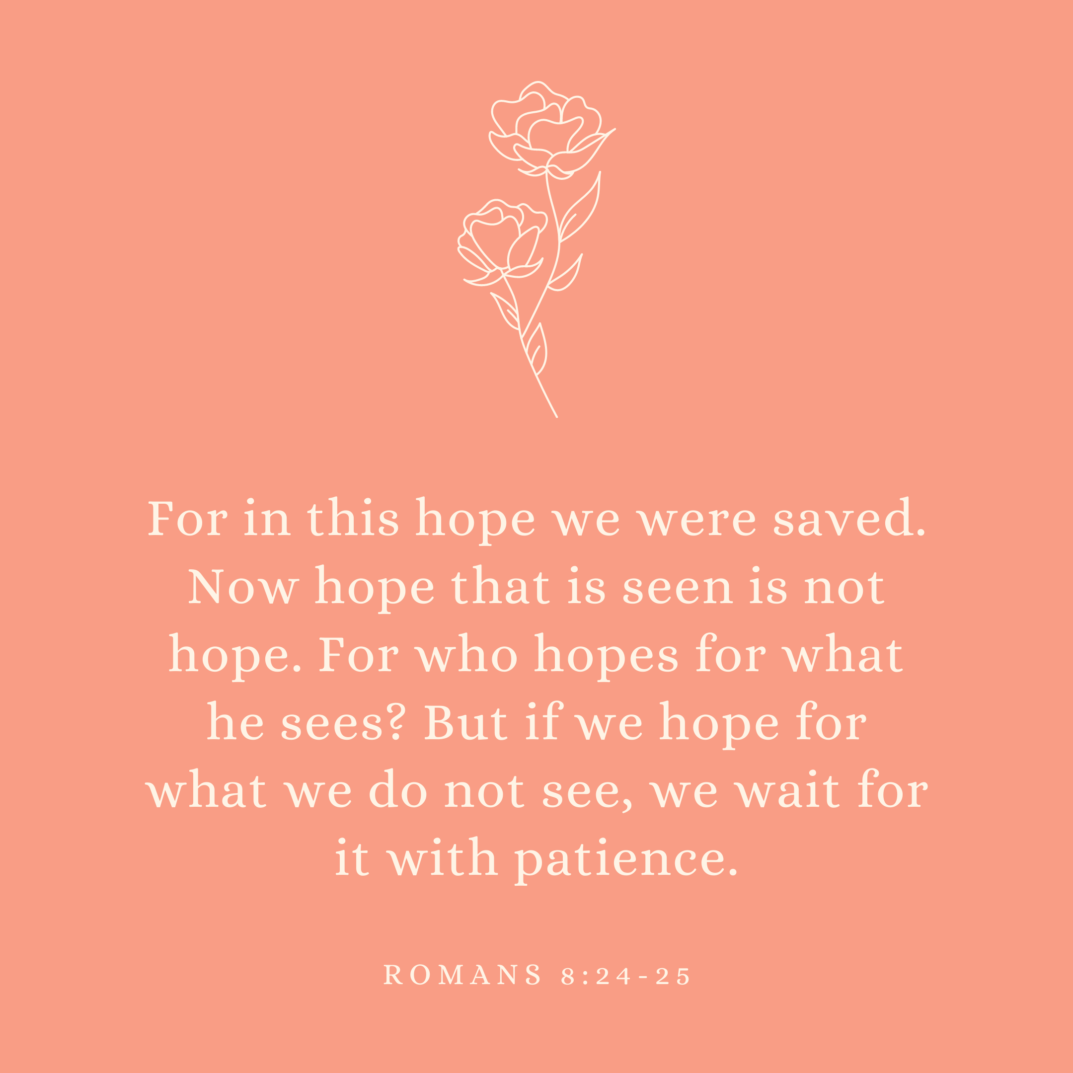 Romans 8:24-25 For in this hope we were saved. Now hope that is seen is not hope. For who hopes for what he sees? But if we hope for what we do not see, we wait for it with patience.