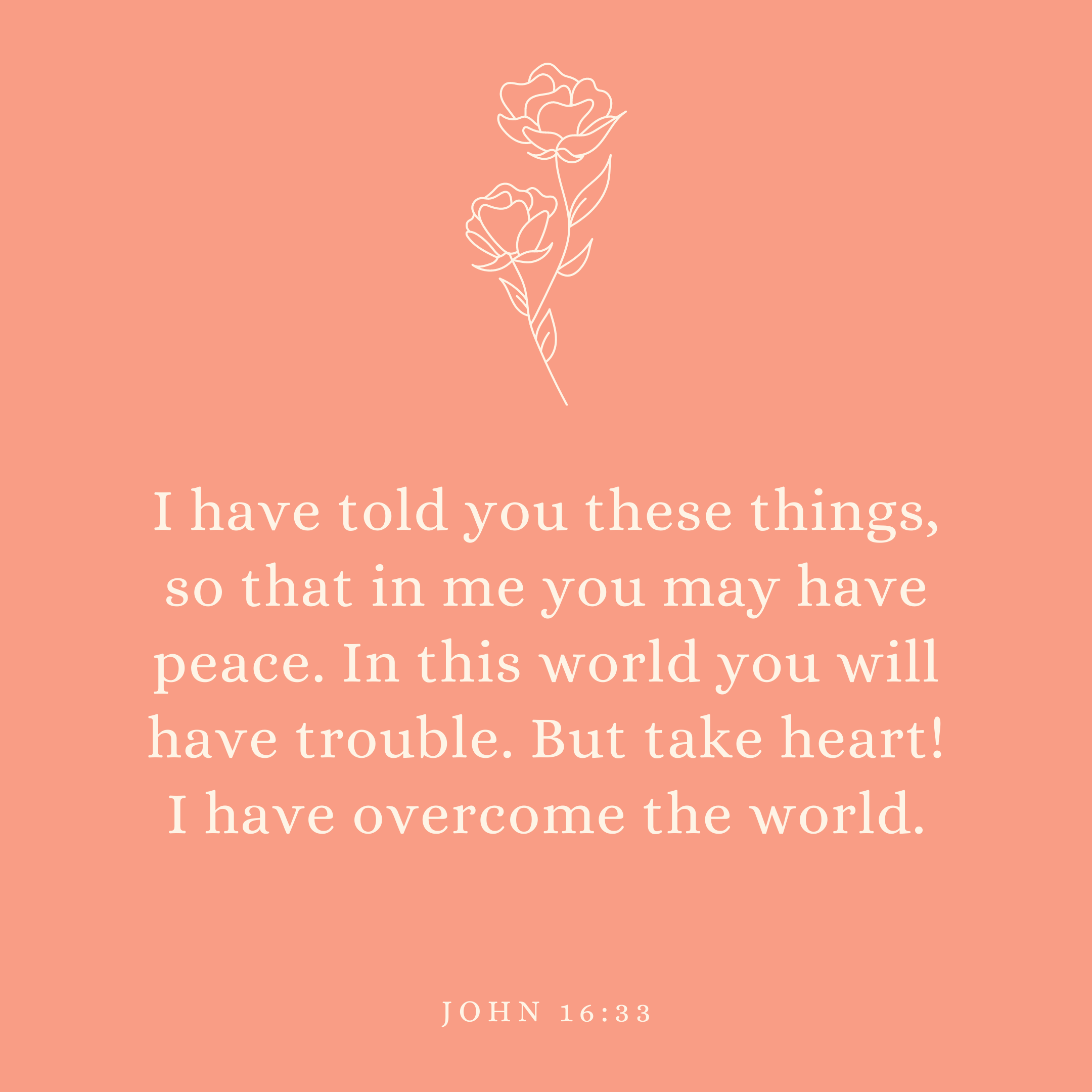 John 16:33 I have told you these things, so that in me you may have peace. In this world you will have trouble. But take heart! I have overcome the world.