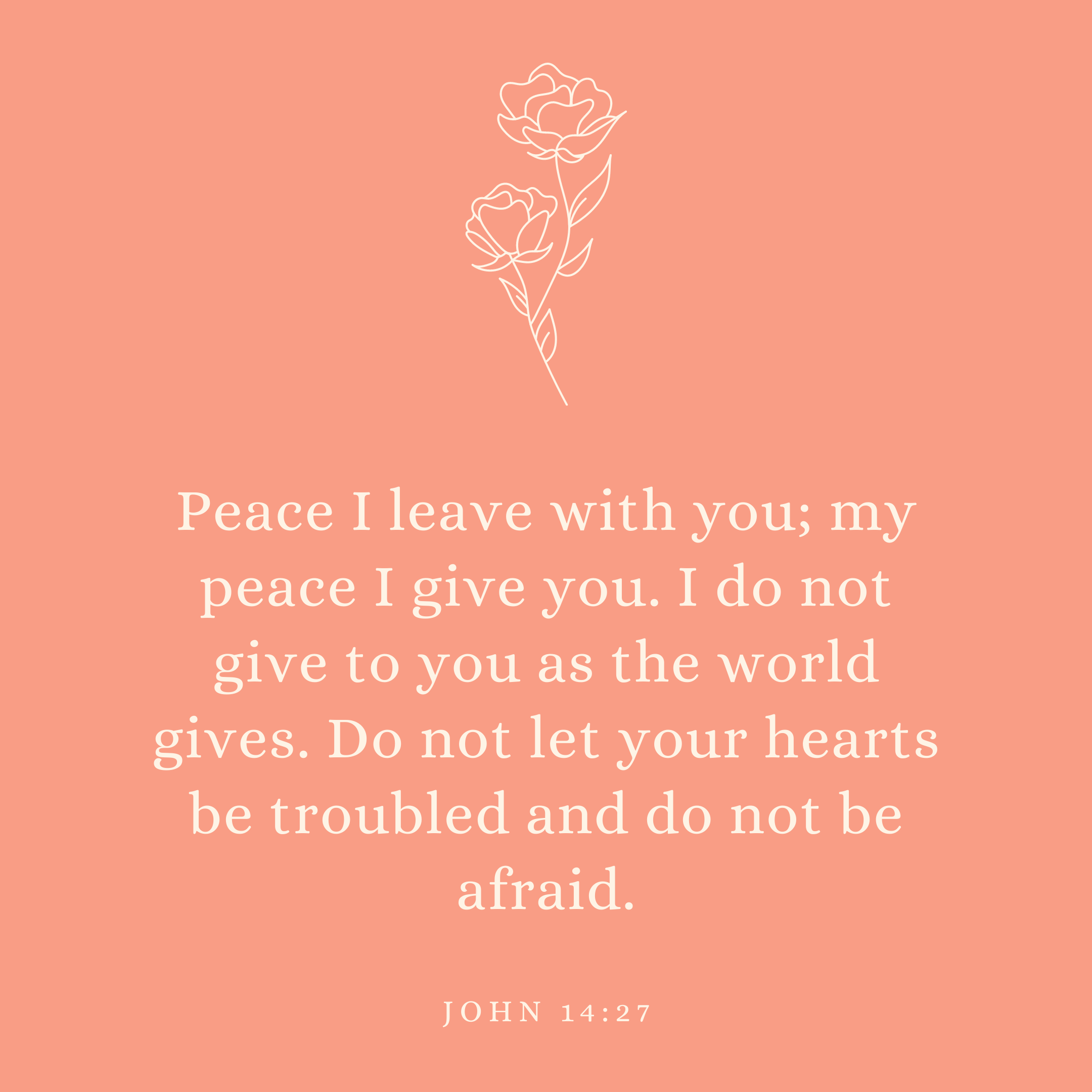 John 14:27 Peace I leave with you; my peace I give you. I do not give to you as the world gives. Do not let your hearts be troubled and do not be afraid.