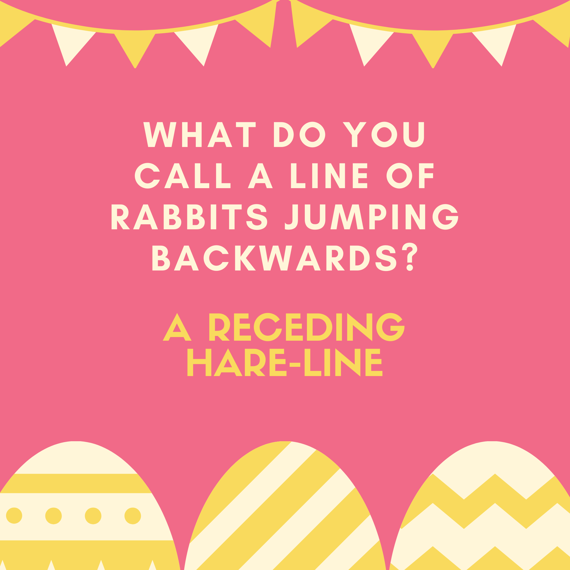 What do you call a line of rabbits jumping backwards? A receding hare-line