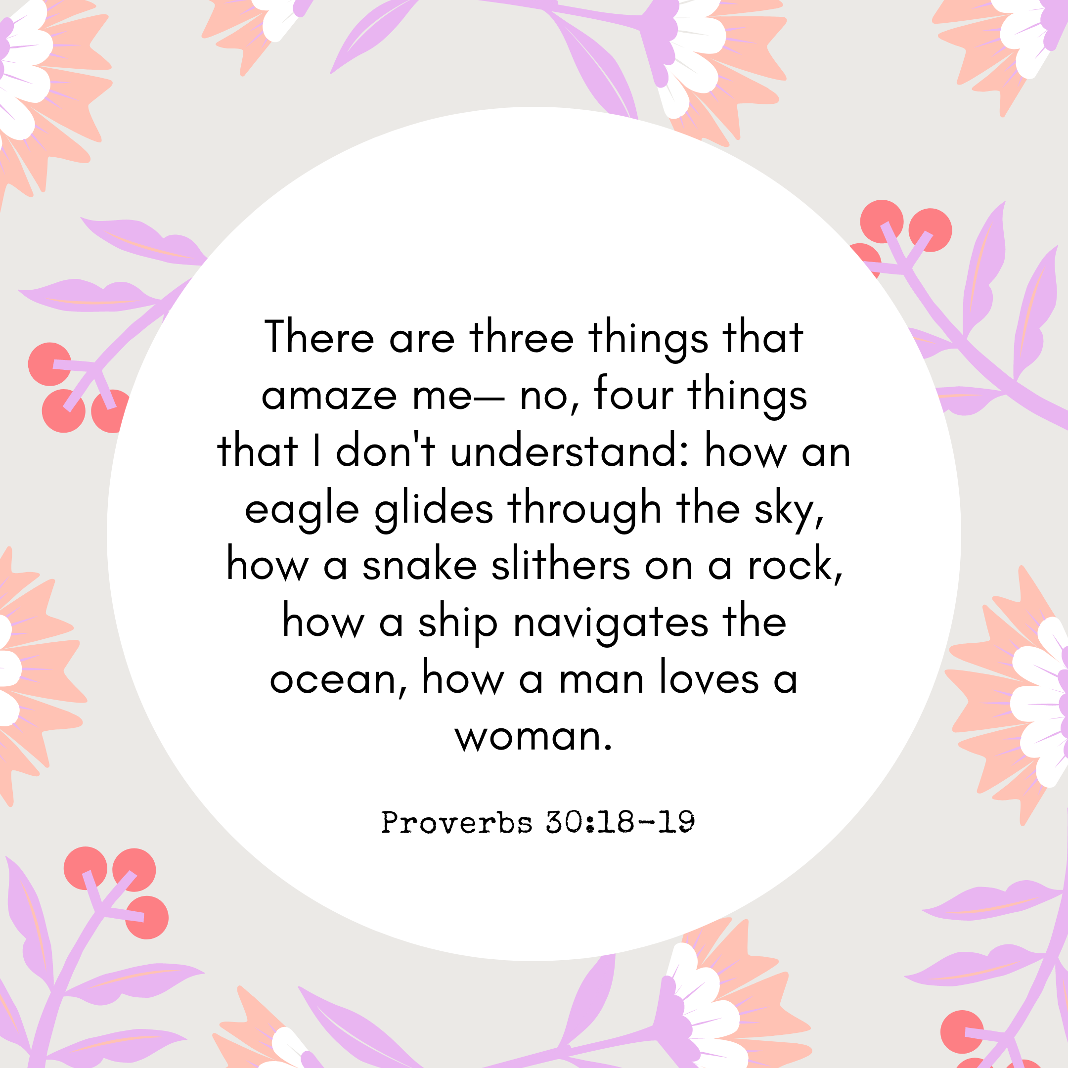 Proverbs 30:18-19 There are three things that amaze me— no, four things that I don't understand: how an eagle glides through the sky, how a snake slithers on a rock, how a ship navigates the ocean, how a man loves a woman.