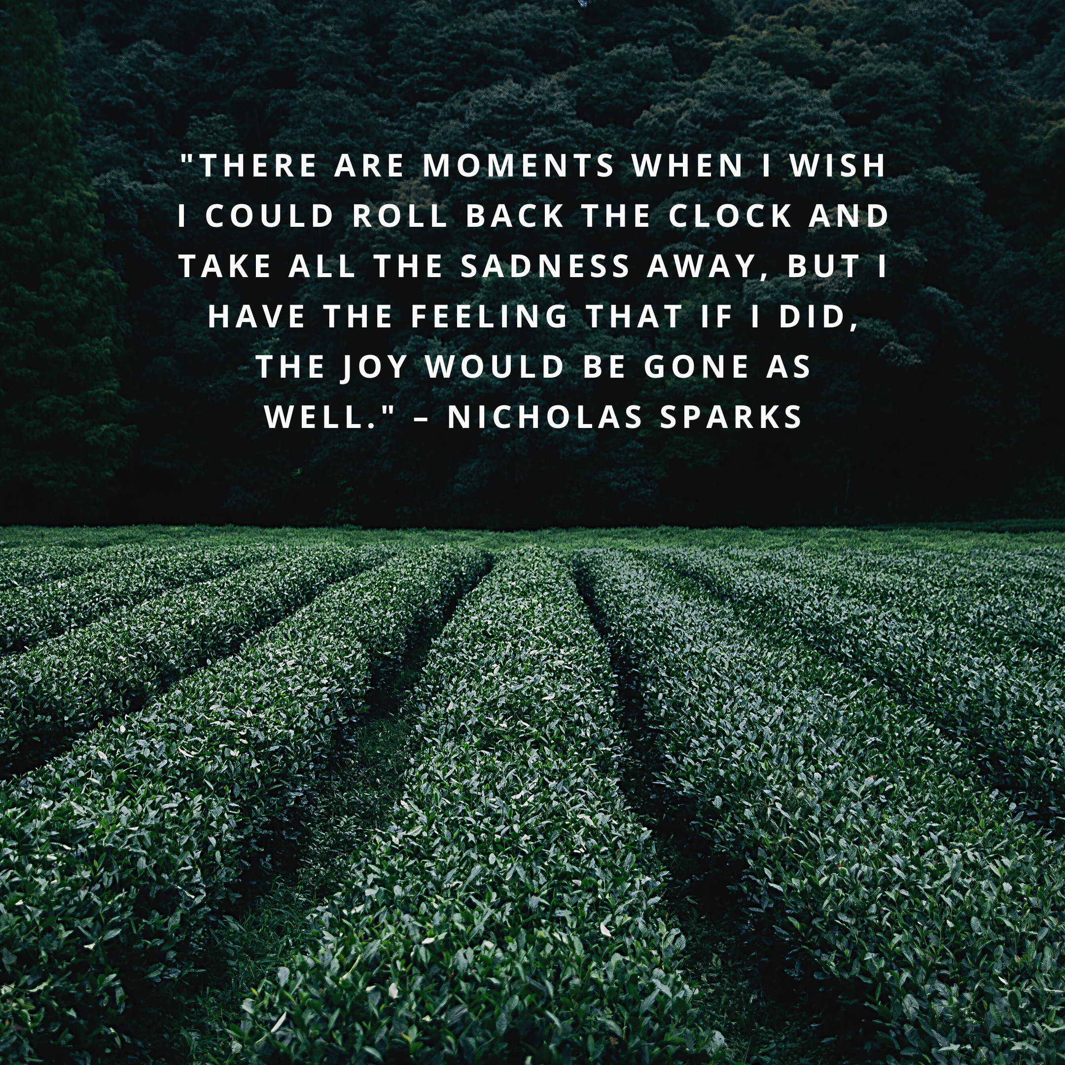 """""""There are moments when I wish I could roll back the clock and take all the sadness away, but I have the feeling that if I did, the joy would be gone as well."""" –Nicholas Sparks"""
