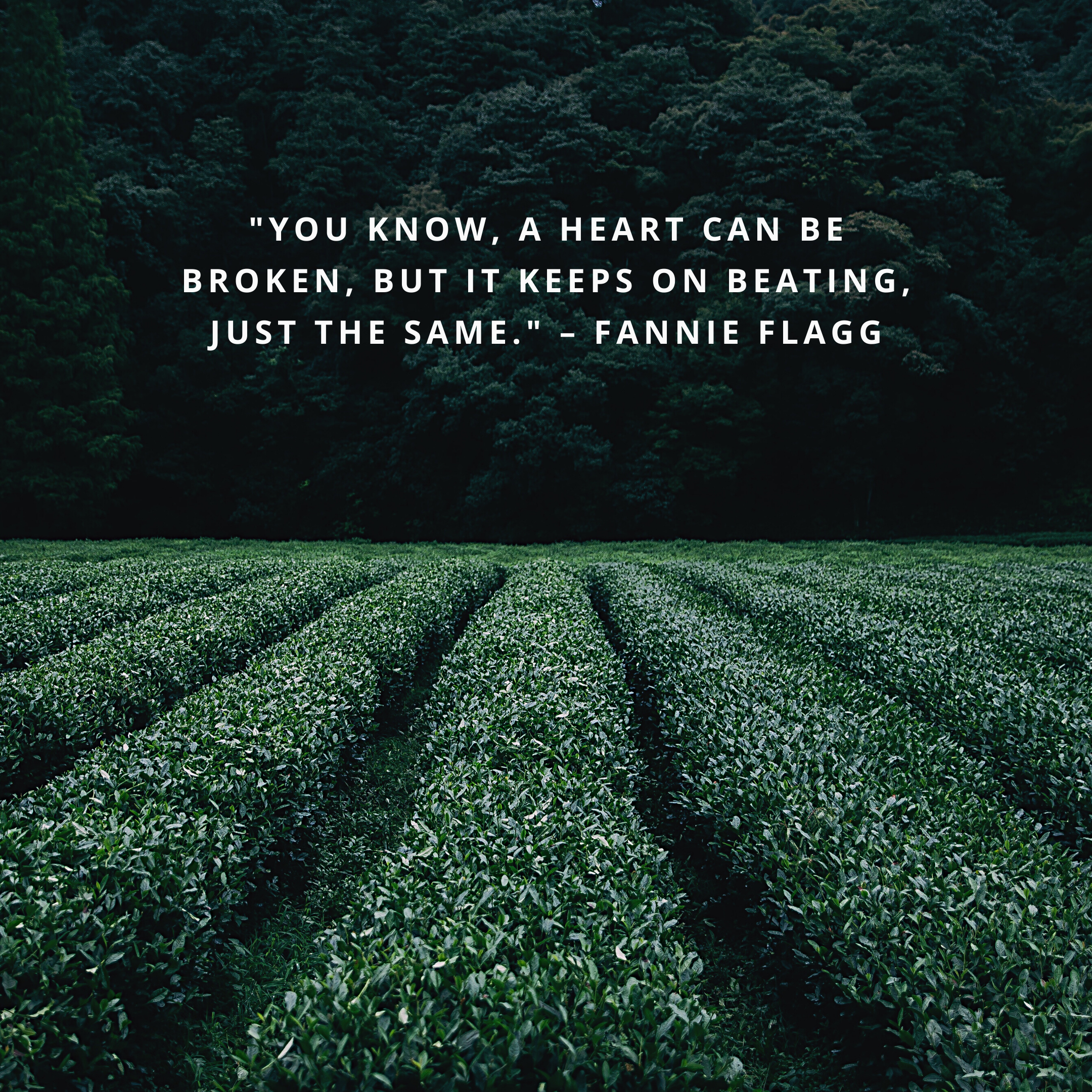 """""""You know, a heart can be broken, but it keeps on beating, just the same."""" –Fannie Flagg"""