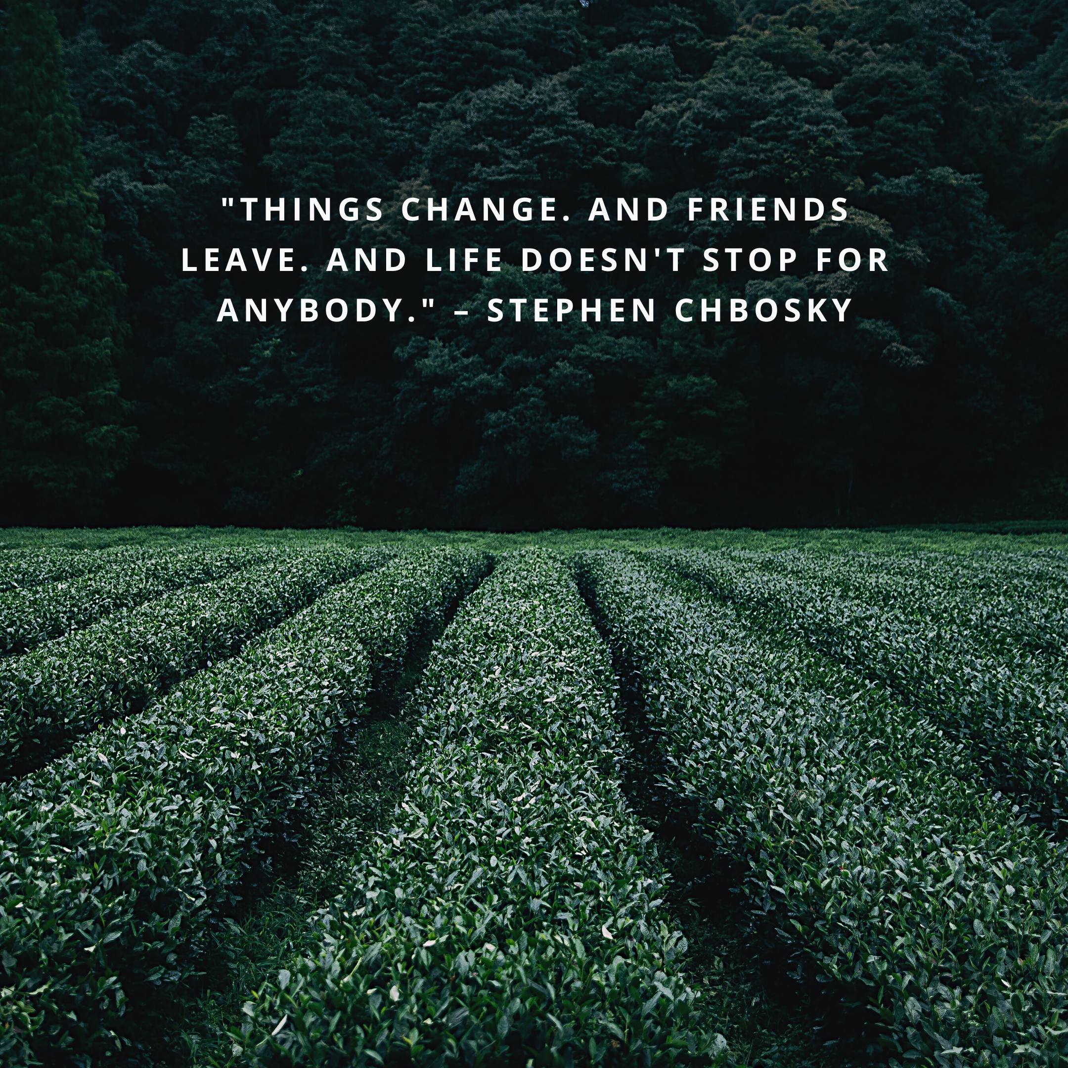 """""""Things change. And friends leave. And life doesn't stop for anybody."""" –Stephen Chbosky"""