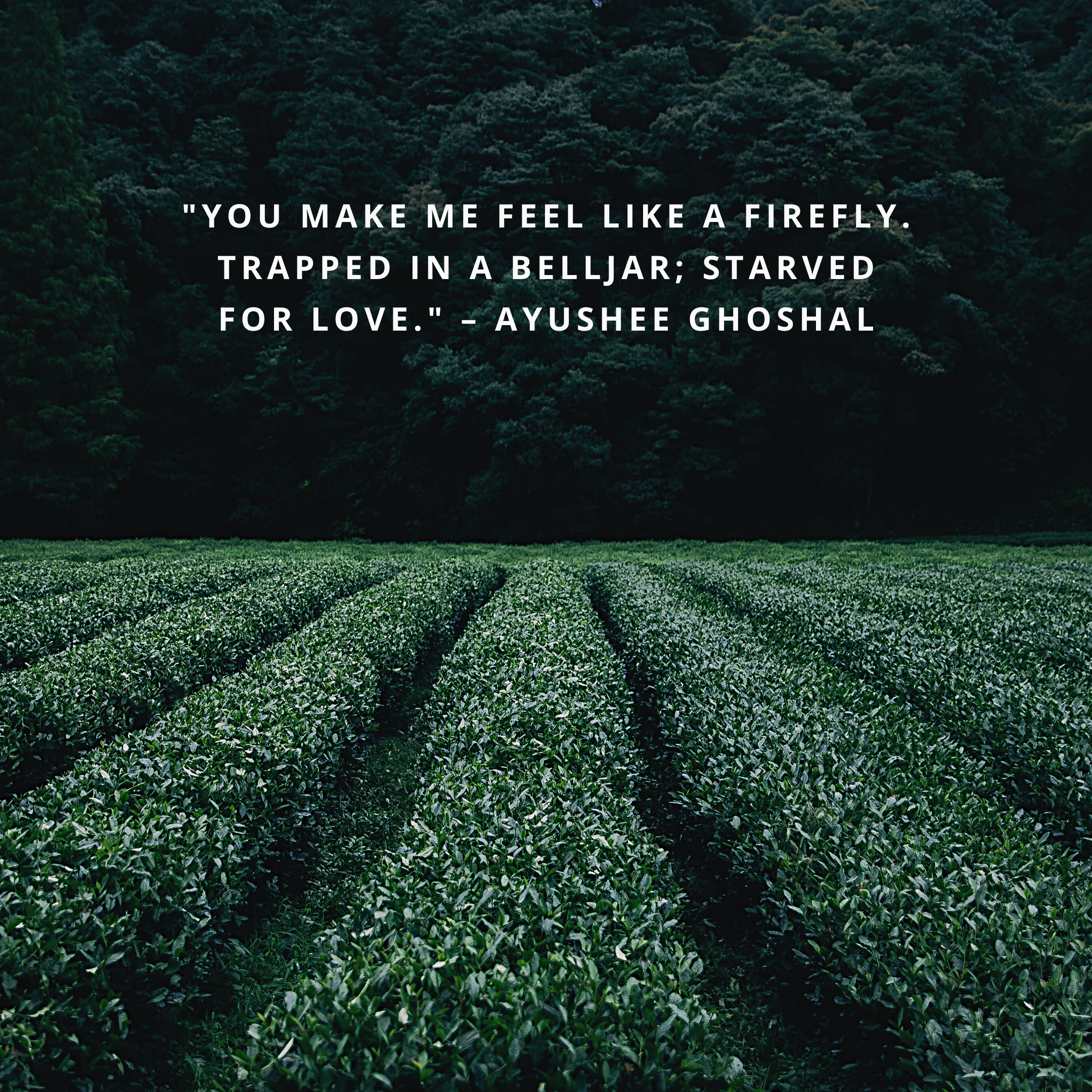 """""""You make me feel like a firefly. Trapped in a belljar; starved for love."""" –Ayushee Ghoshal"""